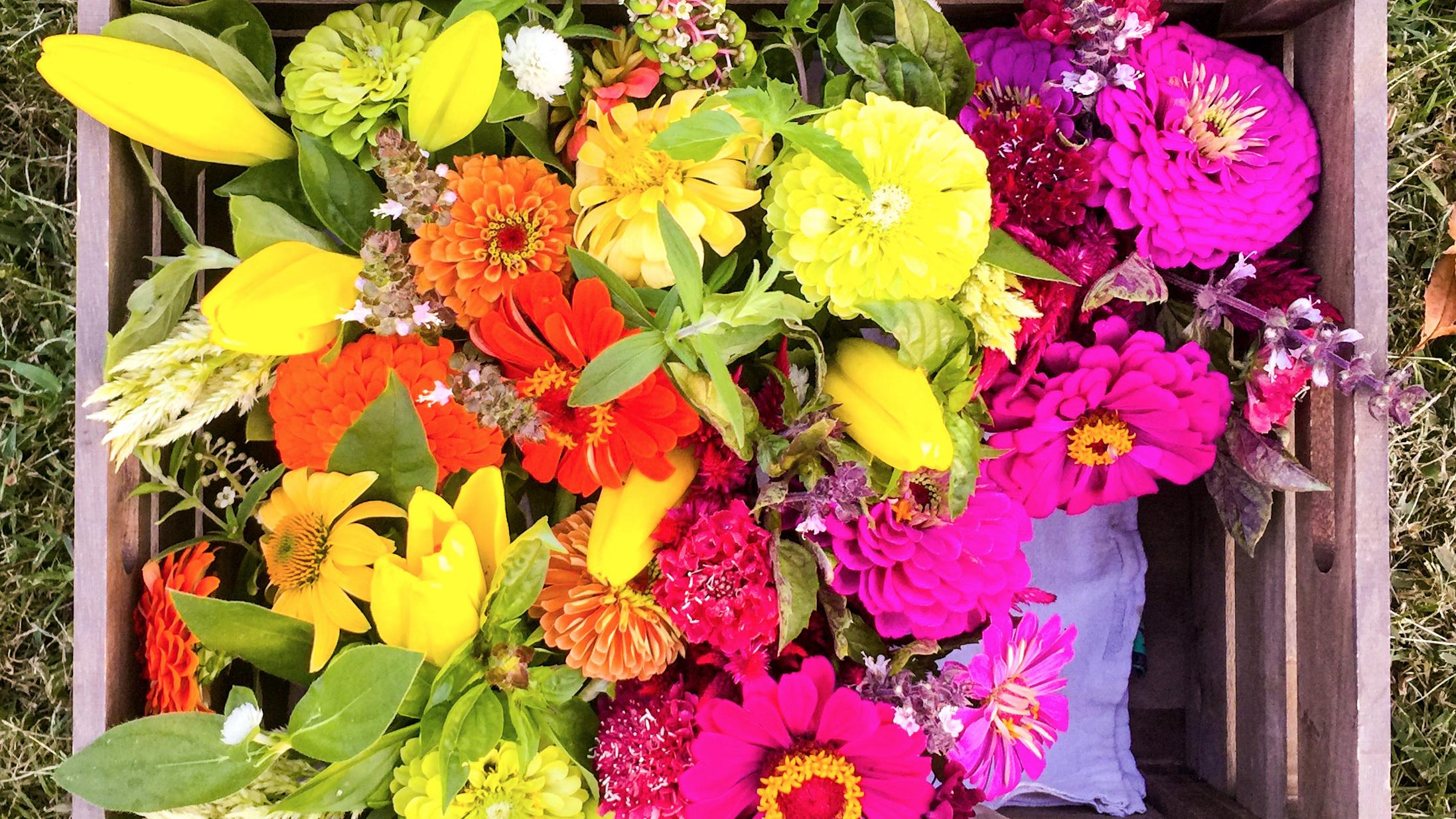 Summerflowers.jpg