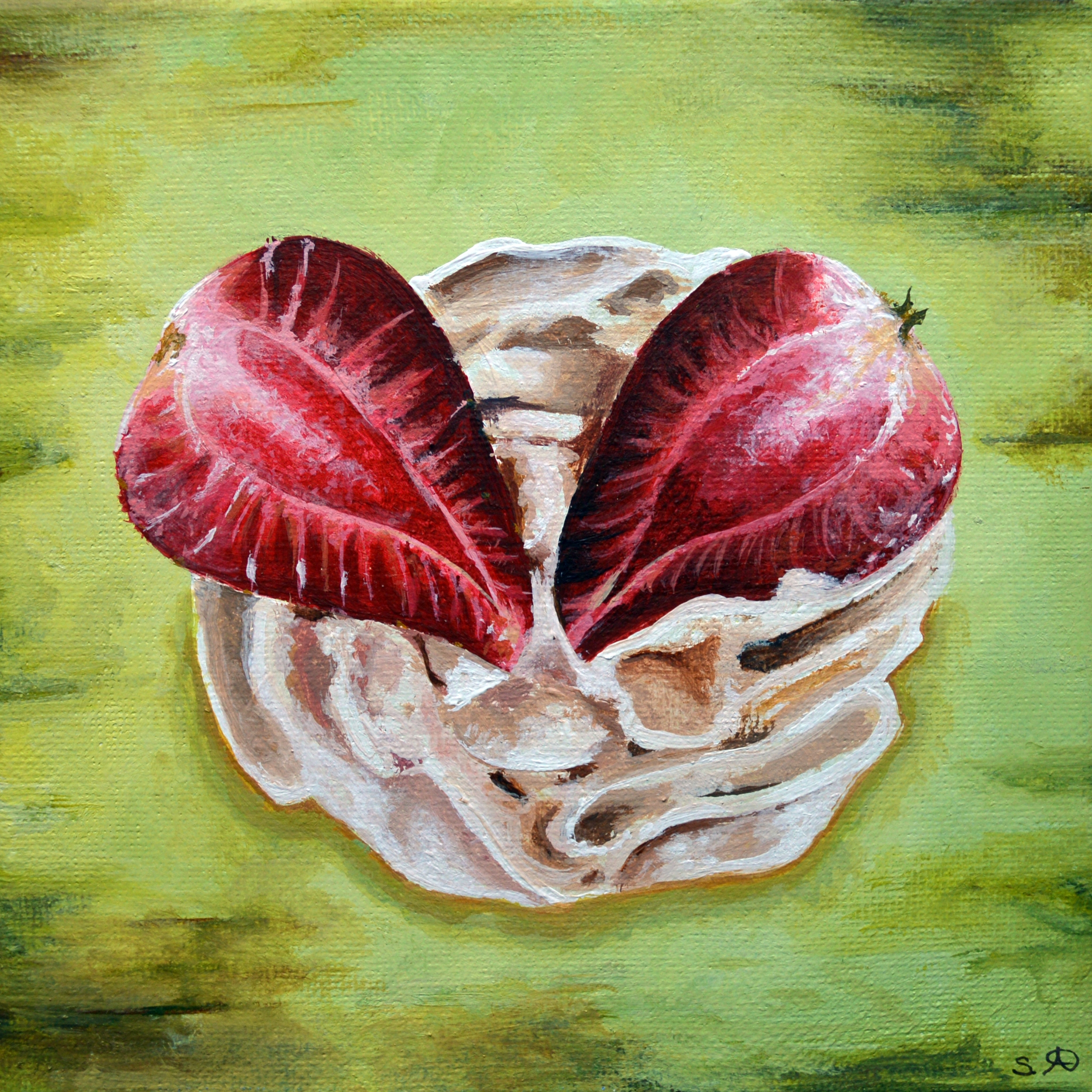 Summer Fruits: Strawberries & Cream