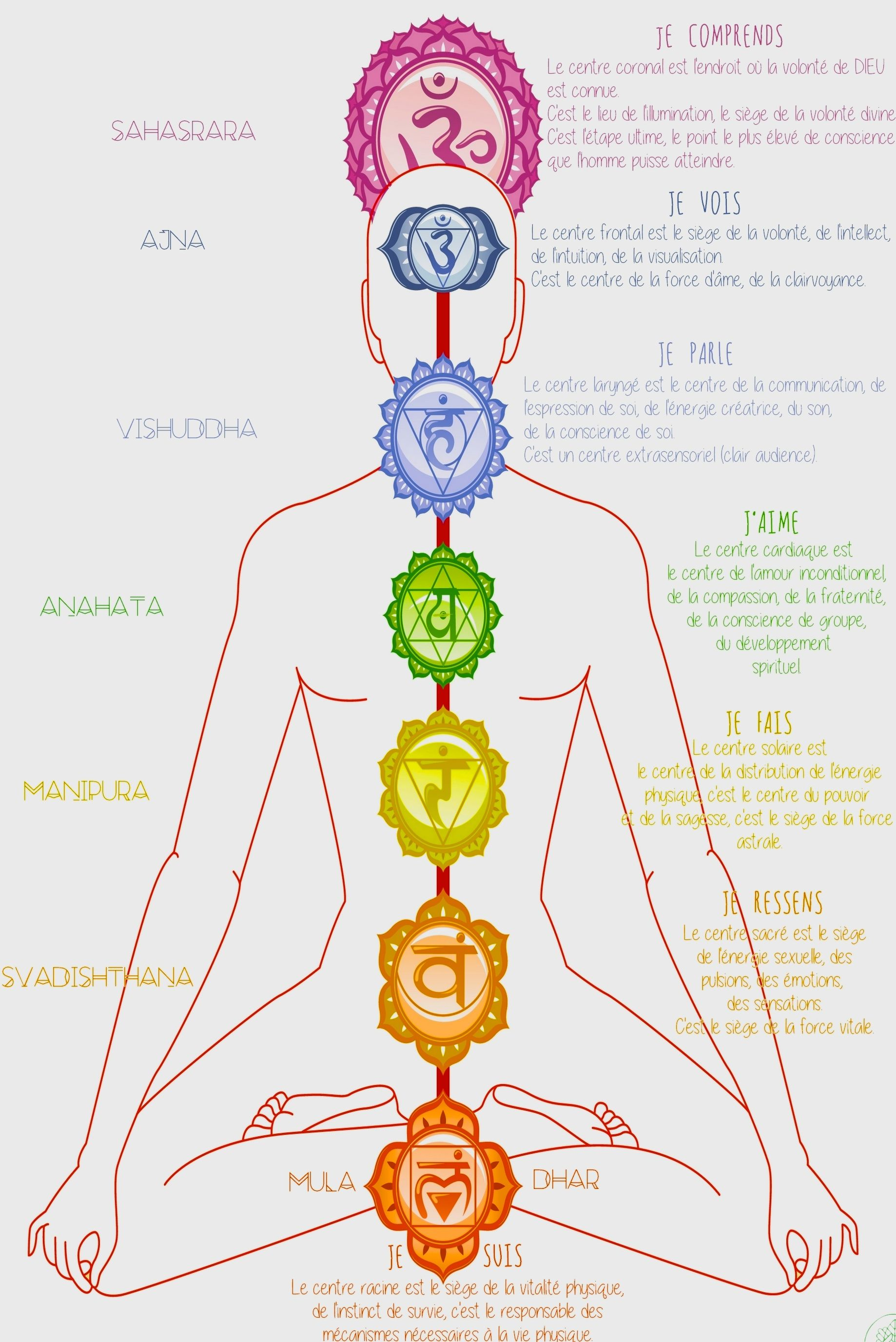 chakras-escale yoga