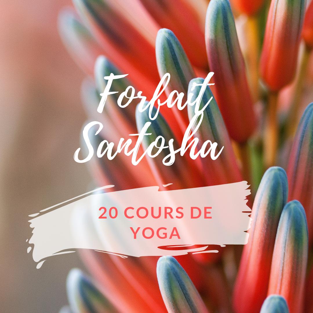 yoga-dynamique-brest-2.png