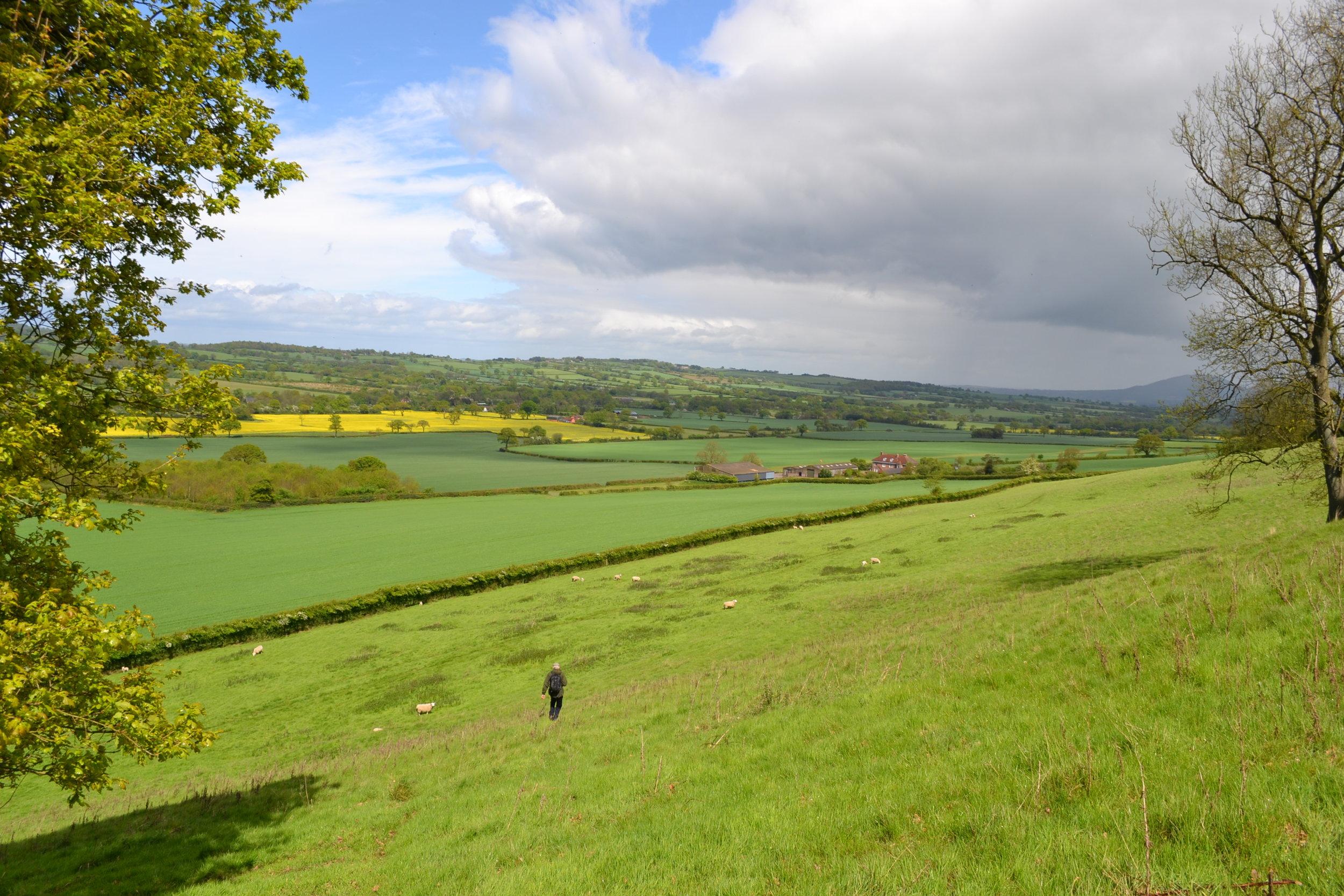 Country walking along scenic wenlock edge