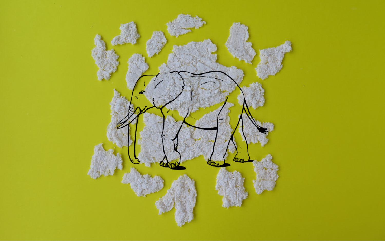_Elephant1.jpg