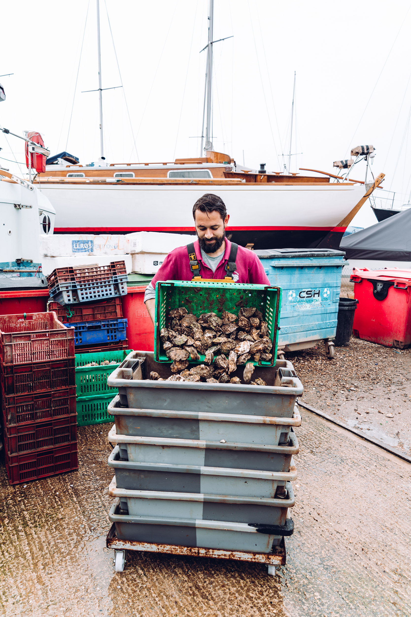 Richard Haward's Oysters   Tom Haward   Mersea 2