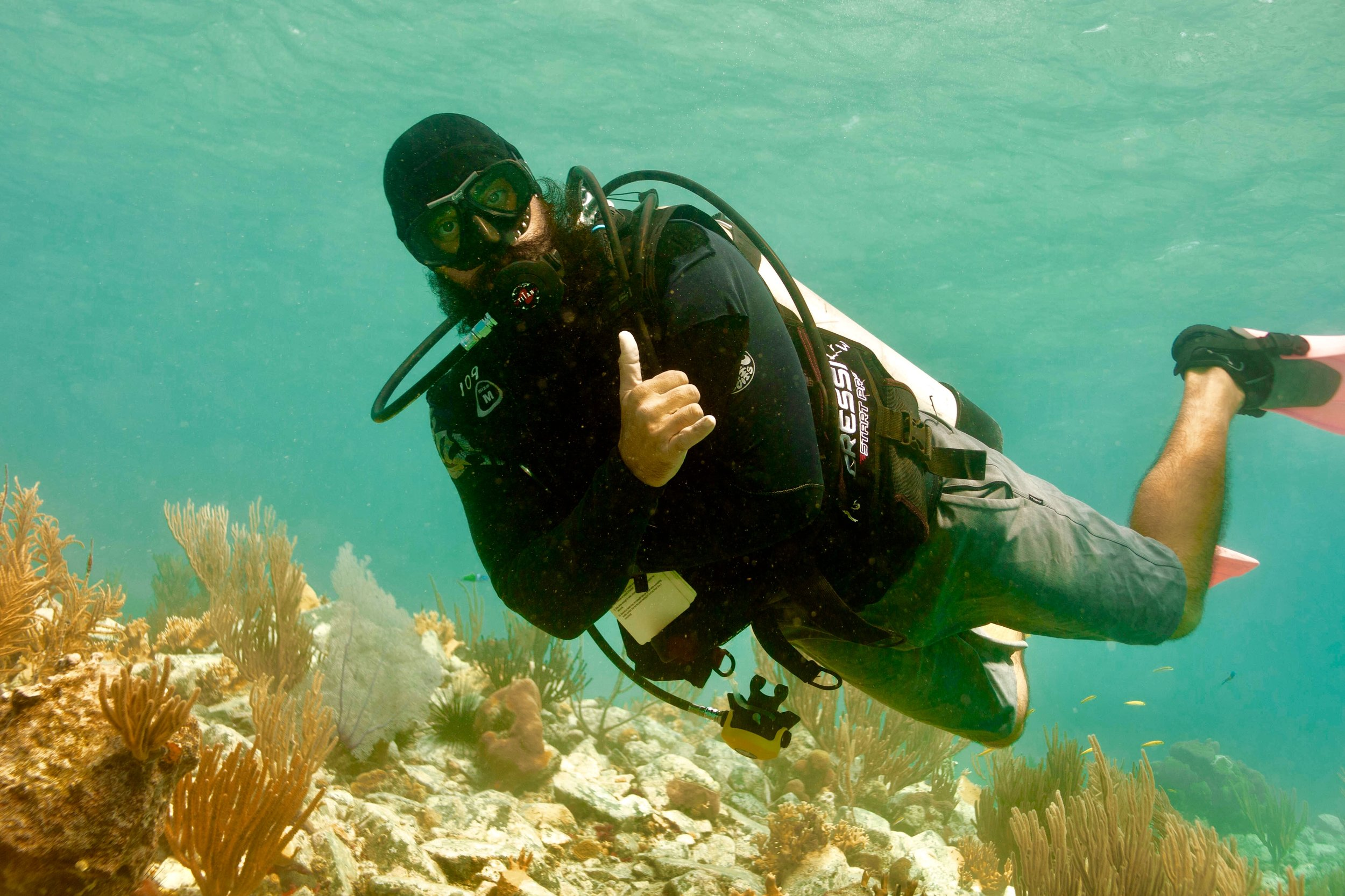 SCUBA - THE BEST WAY TO OBSERVE A FISH IS TO BECOME A FISH-JAQUES COUSTEAU