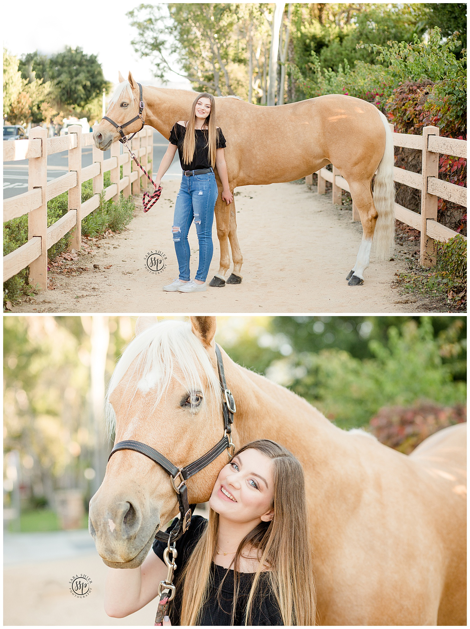 Black Background Horse Rider Equine Photographer Southern California Sara Shier Photography SoCal Equestrian Cowgirl_0375.jpg