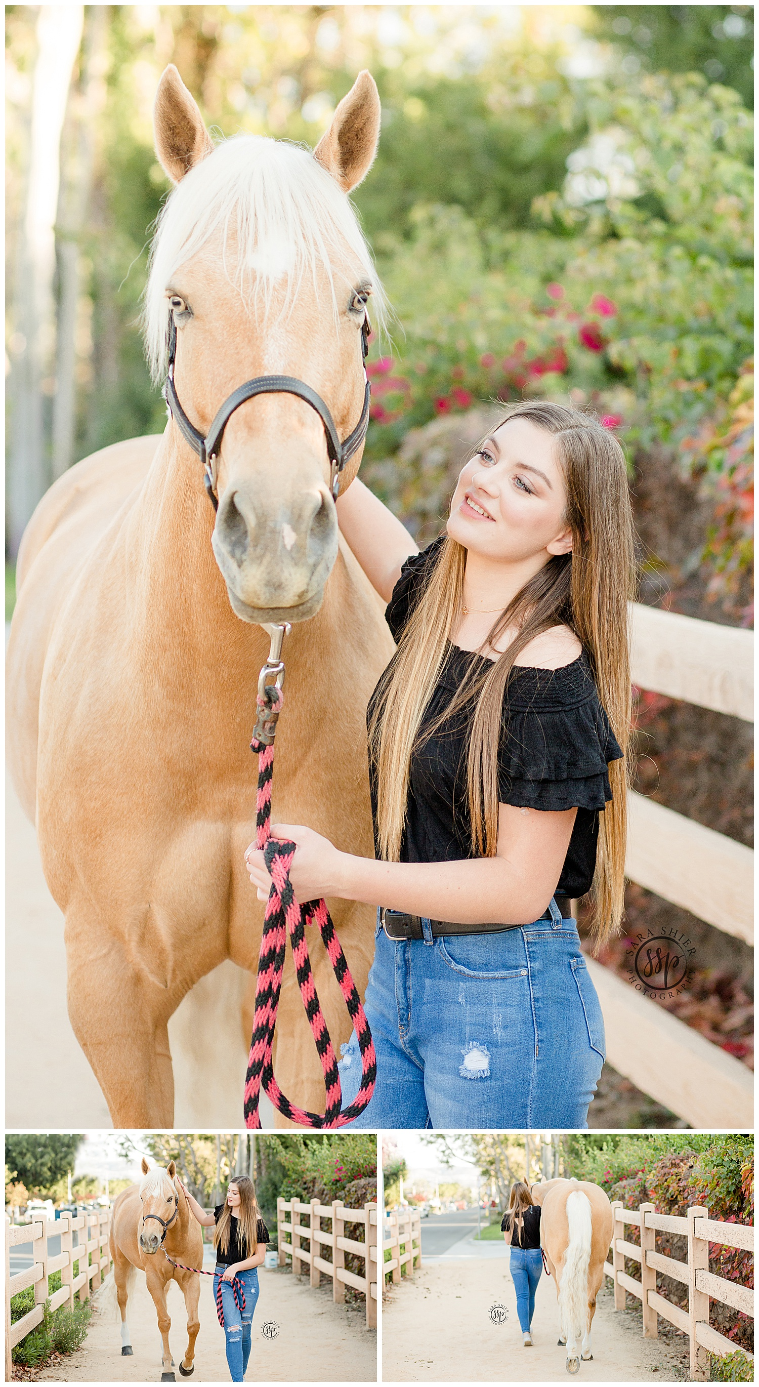 Black Background Horse Rider Equine Photographer Southern California Sara Shier Photography SoCal Equestrian Cowgirl_0374.jpg