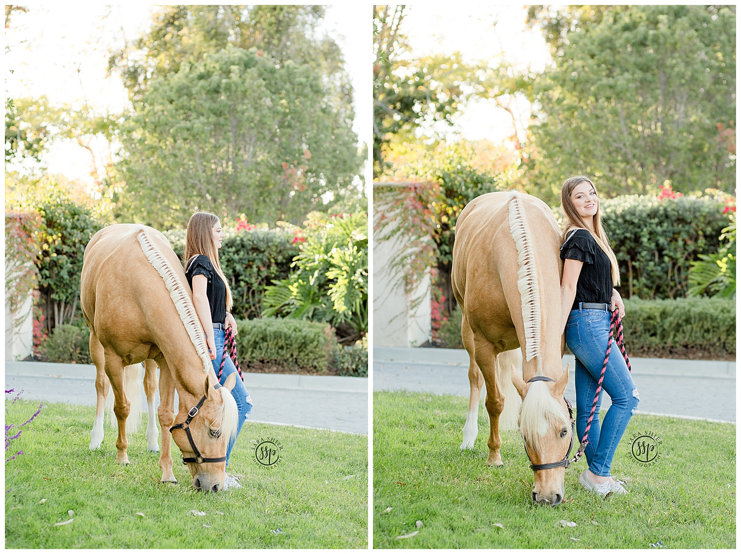 Black Background Horse Rider Equine Photographer Southern California Sara Shier Photography SoCal Equestrian Cowgirl_0376.jpg