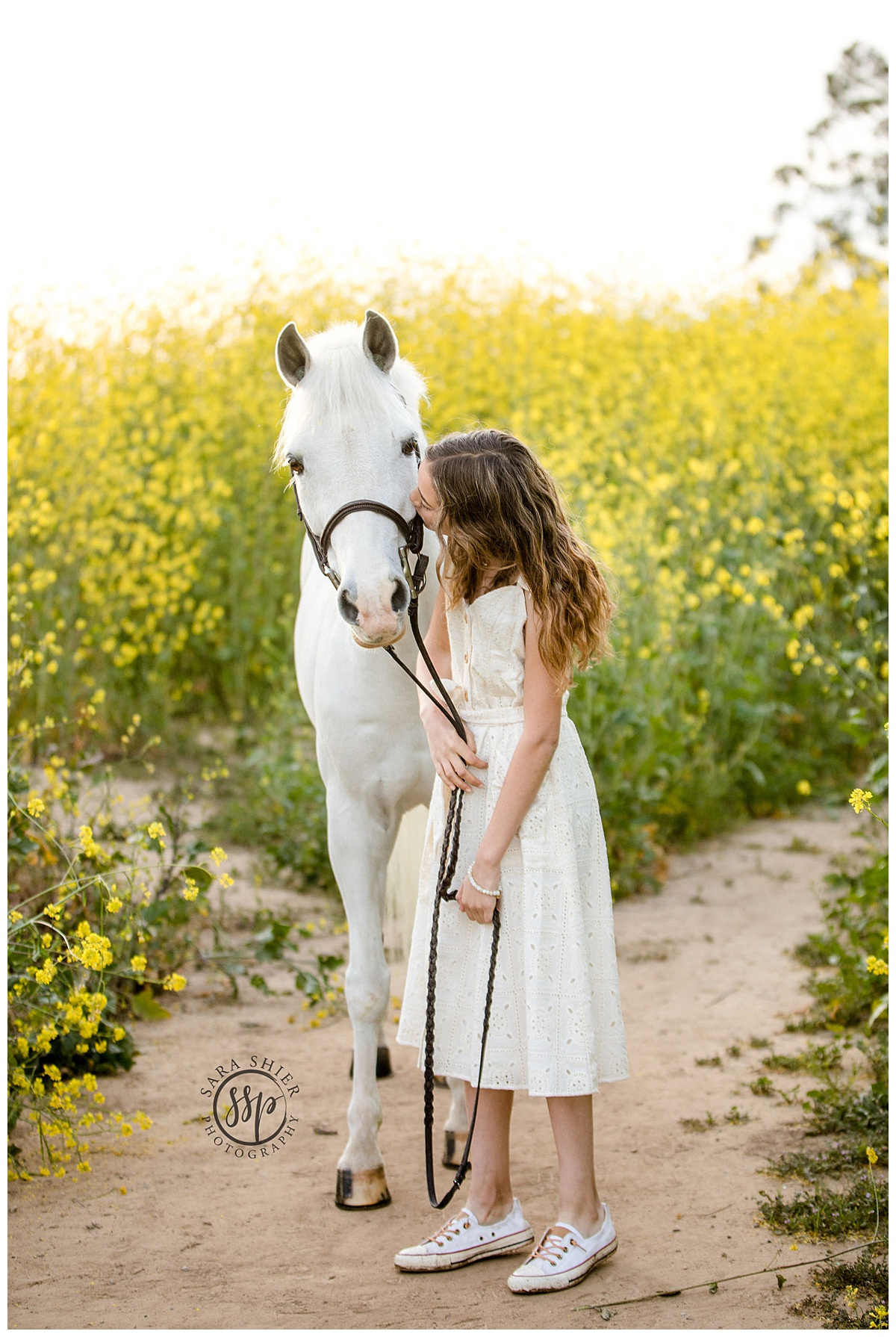 Black Background Horse Rider Equine Photographer Southern California Sara Shier Photography SoCal Equestrian Cowgirl USEF_0213.jpg