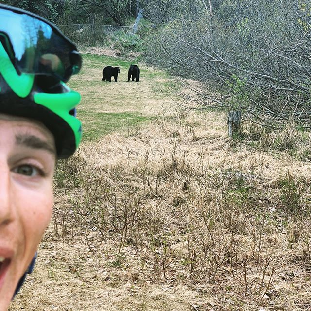Chased around by a couple of bears today. Thanks @polarglobal for the new #polarvantagem for keeping track of me out there! Check out my @strava account to see my route! #bloodsweatanddata #alaskabornandraised #wildlife #100milesinmayak