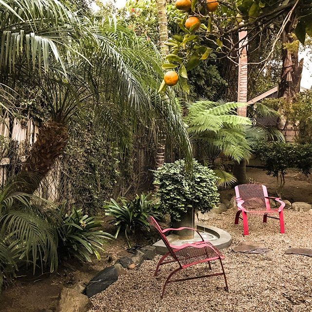 Wake up to this! #airbnbhost #propertymanagement #airbnbsuperhost #airbnbmanagement #airbnbexperience #vrbo #travel #travels #backyarddesign #backyard #fountain #garden #citrustrees #travelcalifornia #california #westcoast