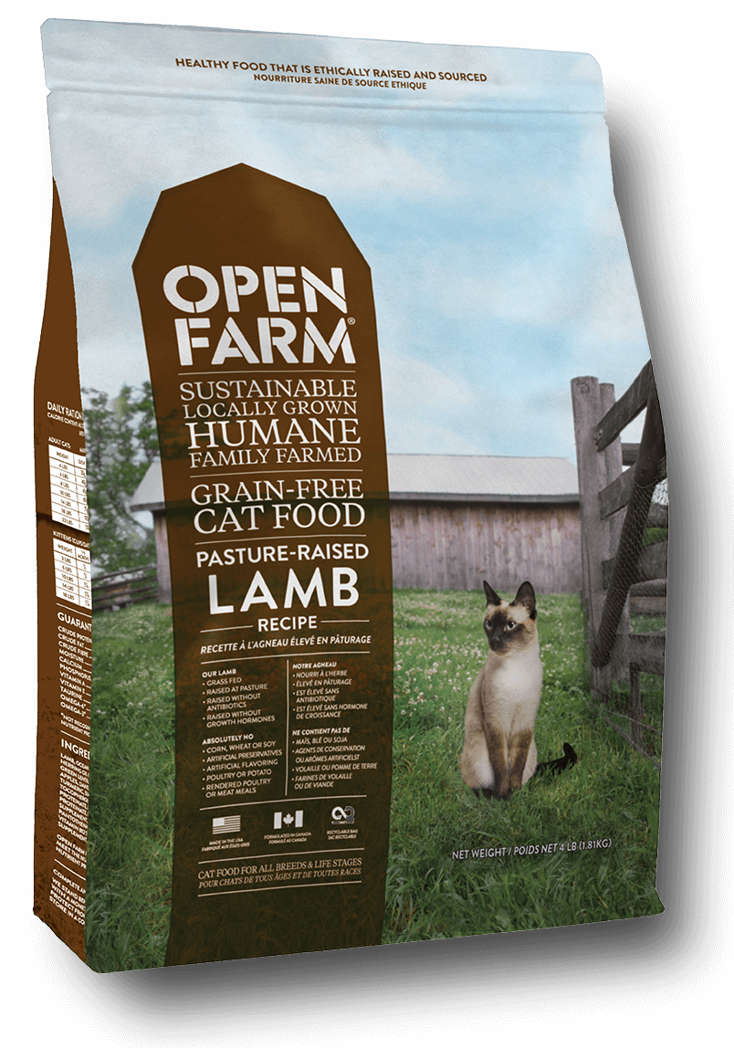 lamb_cat_render_web21.png