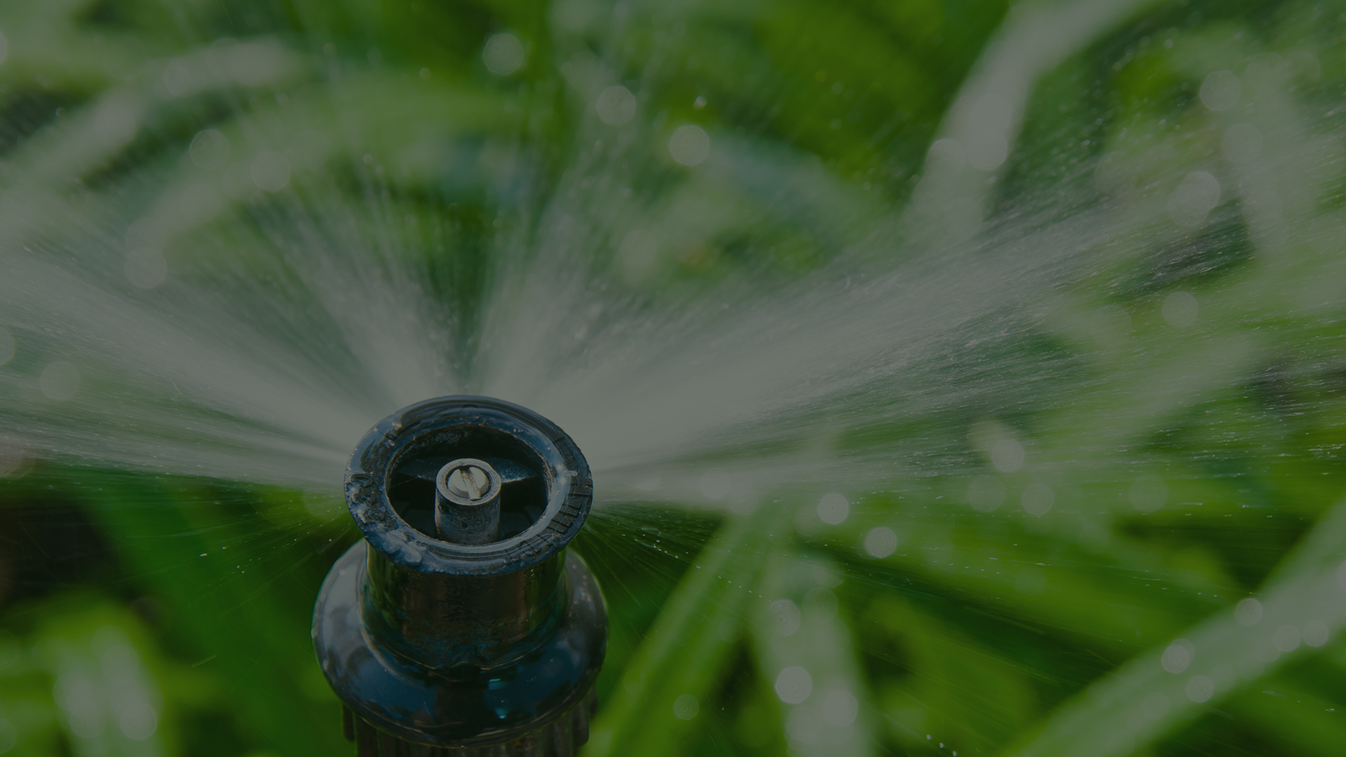 Irrigation Systems   We have qualified staff to handle any of your irrigation needs.   Learn More