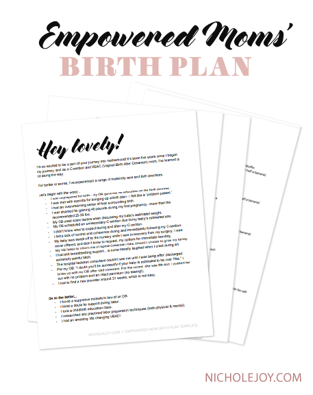 birthplan-preview.png