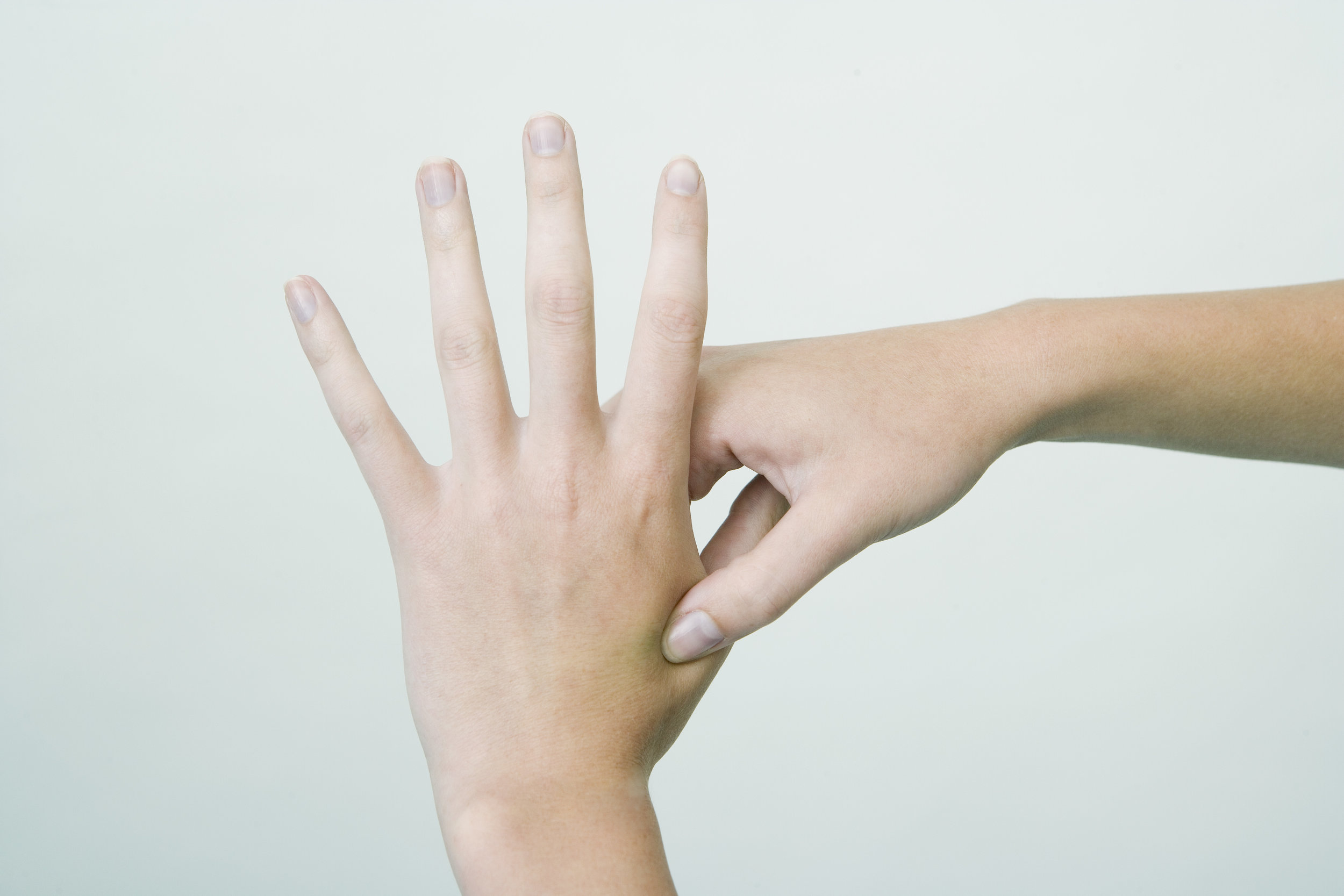 large intestine point -