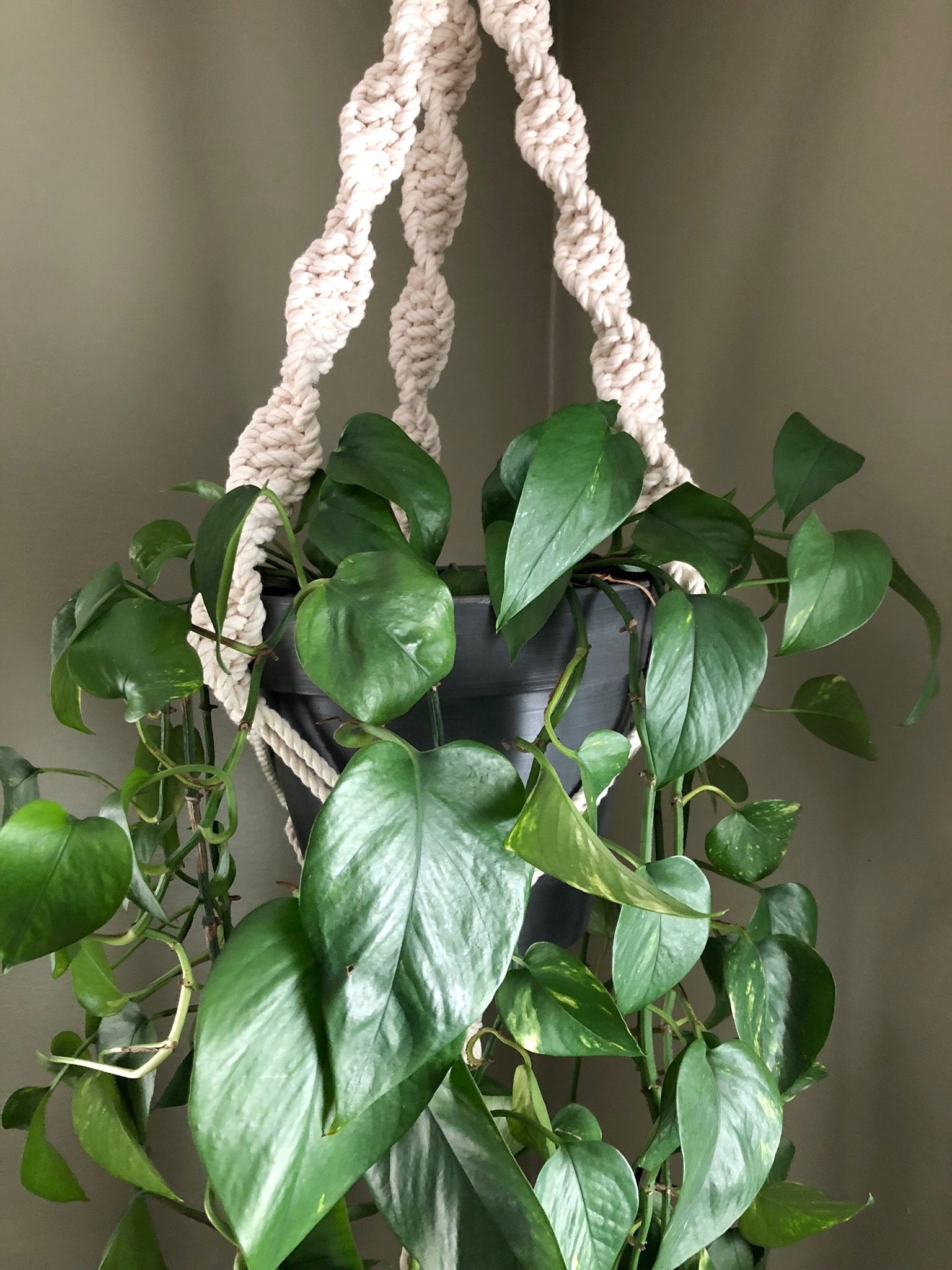 A classic plant hanger for my dining area.