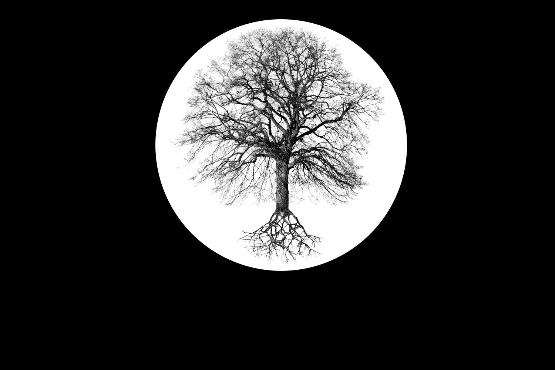 Logo_Carmona_transparent.png
