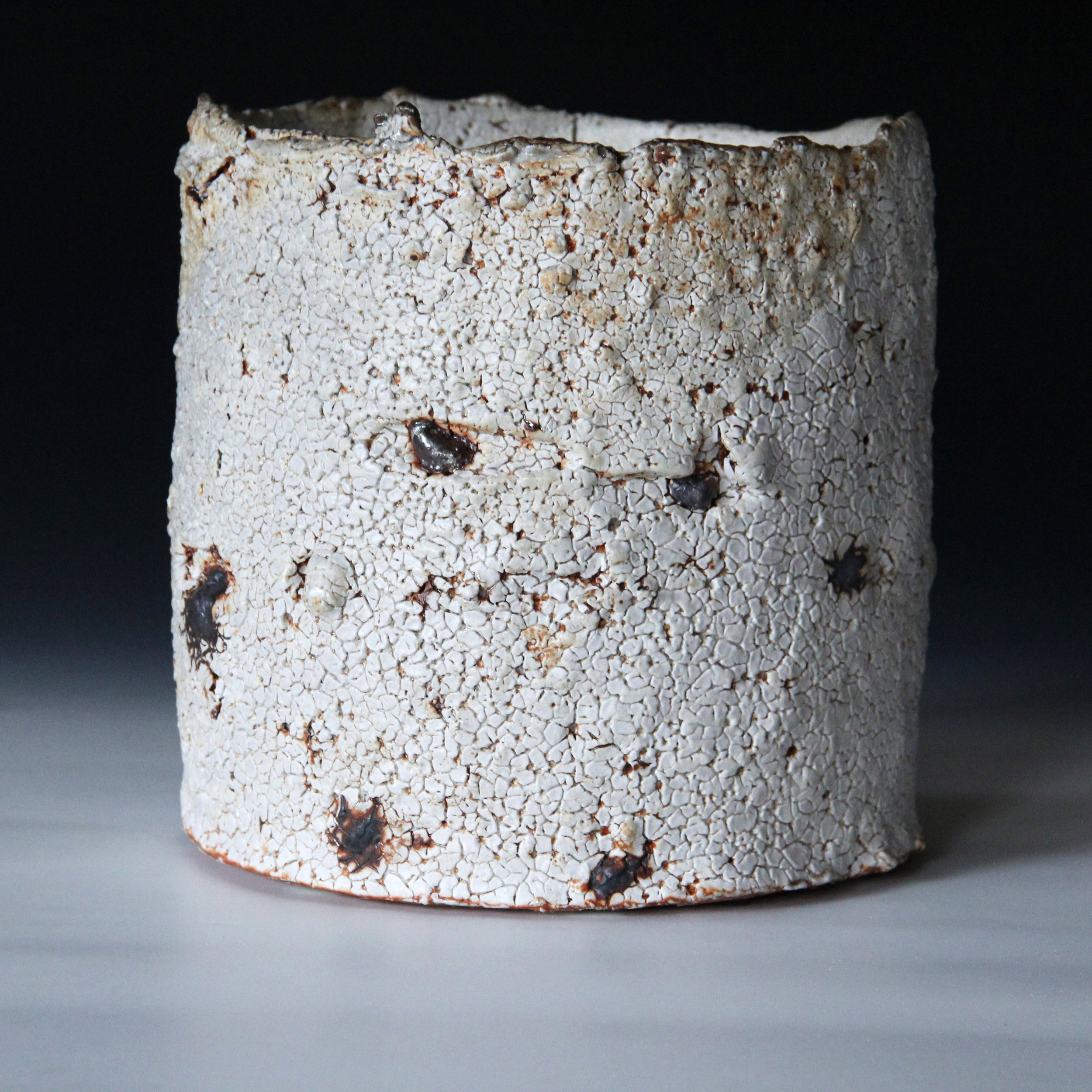 1. Sandy Lockwood 'Subduction Series' - woodfired and saltglazed - 23 x 24cm IMG_0392 (2).JPG