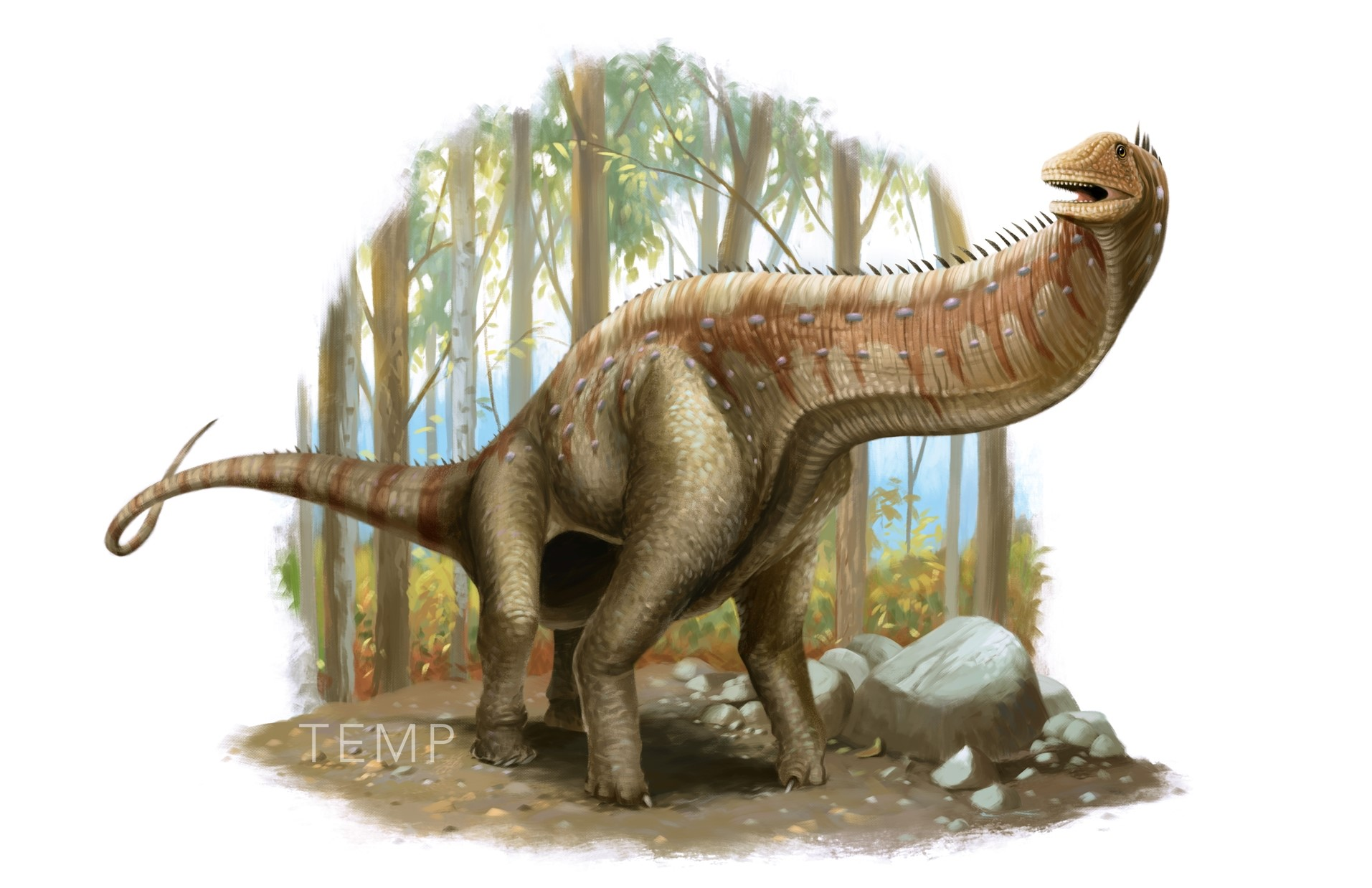 05 Isisaurus - Second Last.jpg