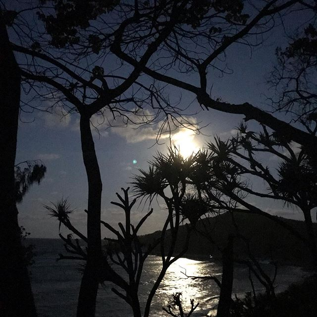 Subtle. In the chaotic world around you, with ever changing energies & events can you access your innate subtle guidance the shows you the way forward? Be your own light, the moon is busy enough😉 #bliss #energyhealing #guidance #innate #lightworker #wayseer #intuition #fullmoon #noosanationalpark #noosa