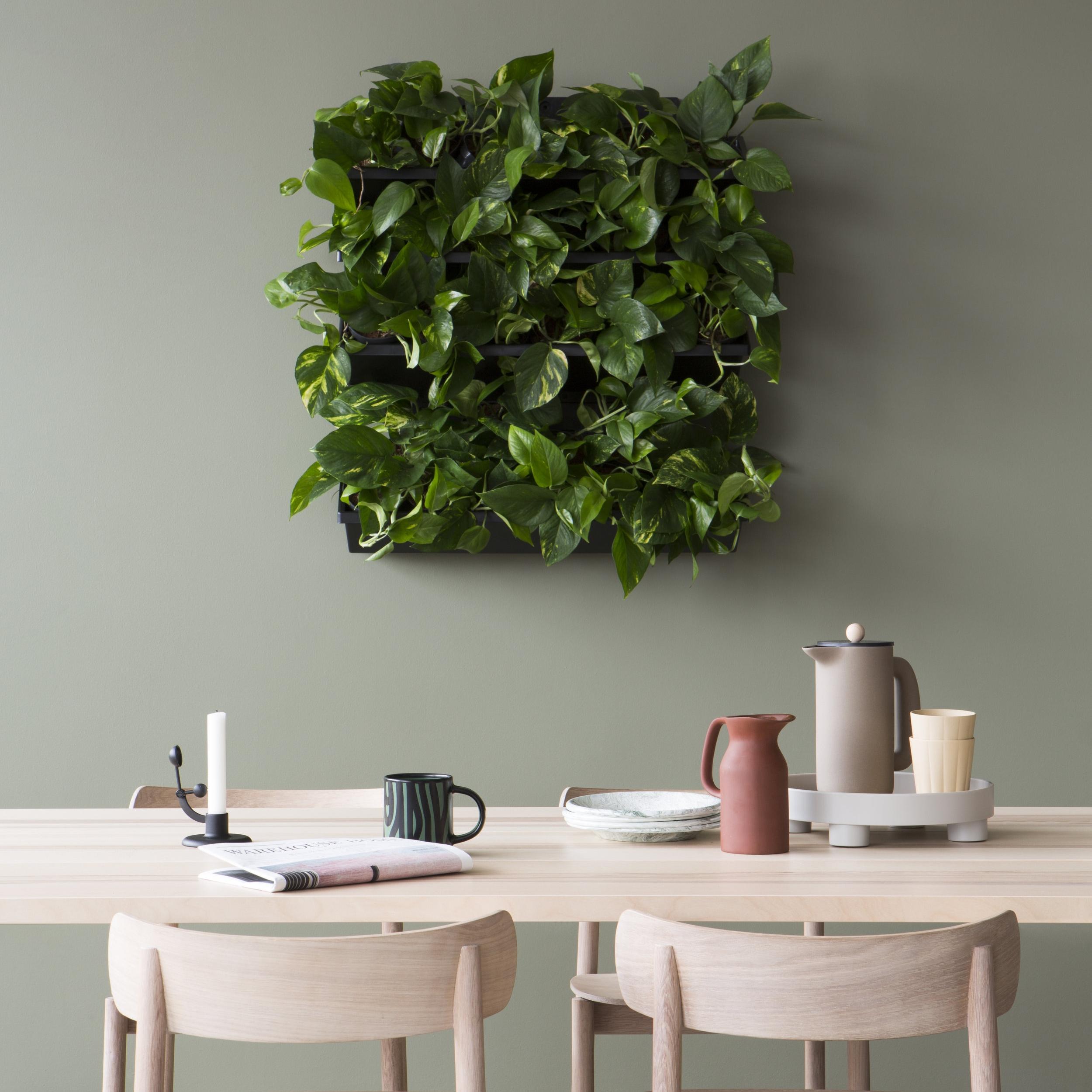 Skogluft Plantevegg