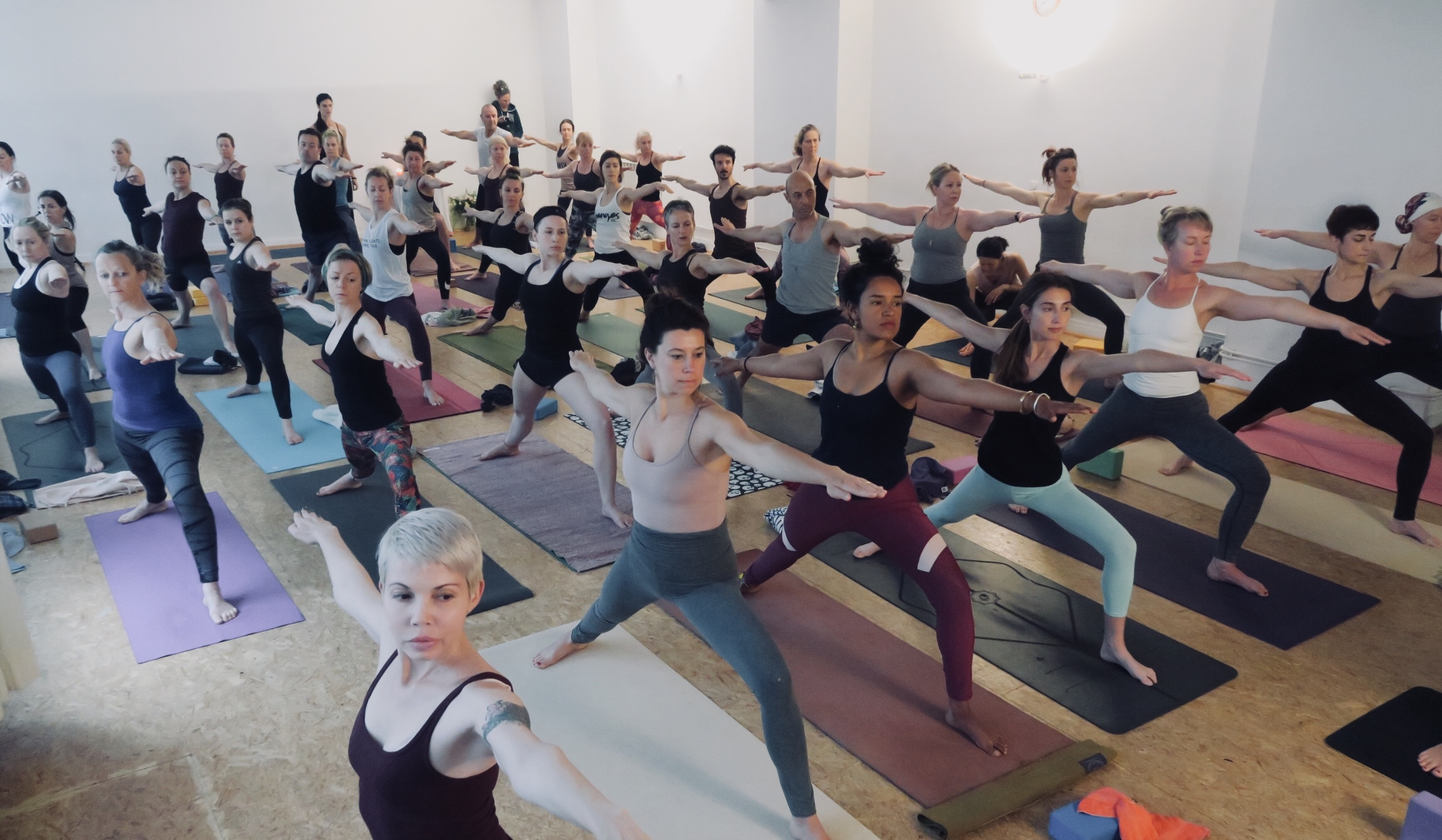 VIDEO: Ashtanga Yoga Counted Primary Series with Kia Naddermier
