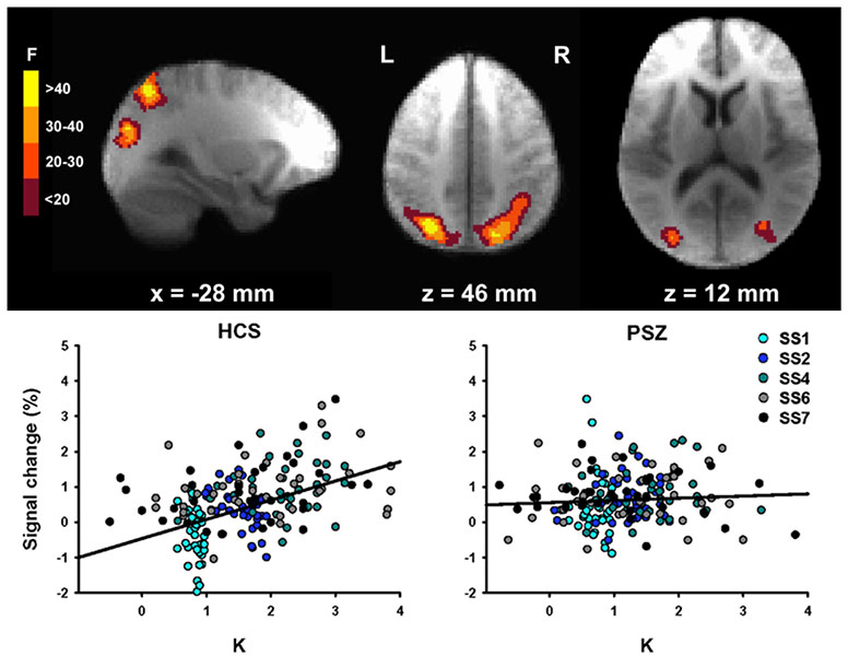 Hahn fMRI Change Detection.jpg