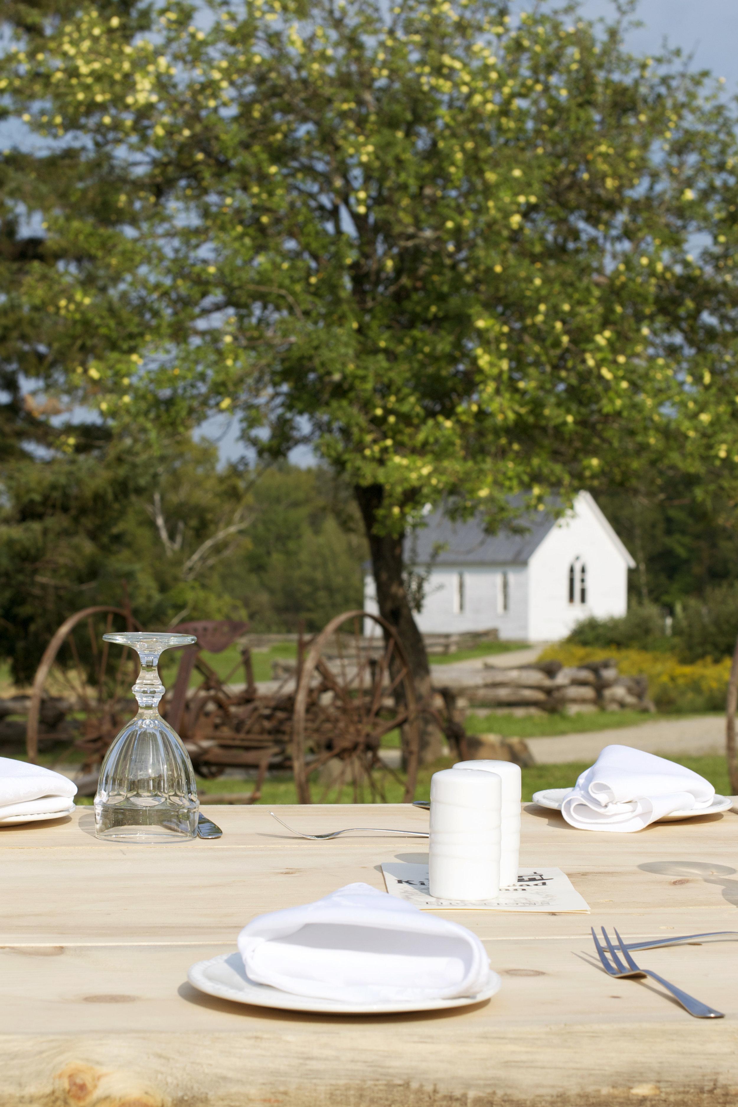 table-view-apple-tree.jpg