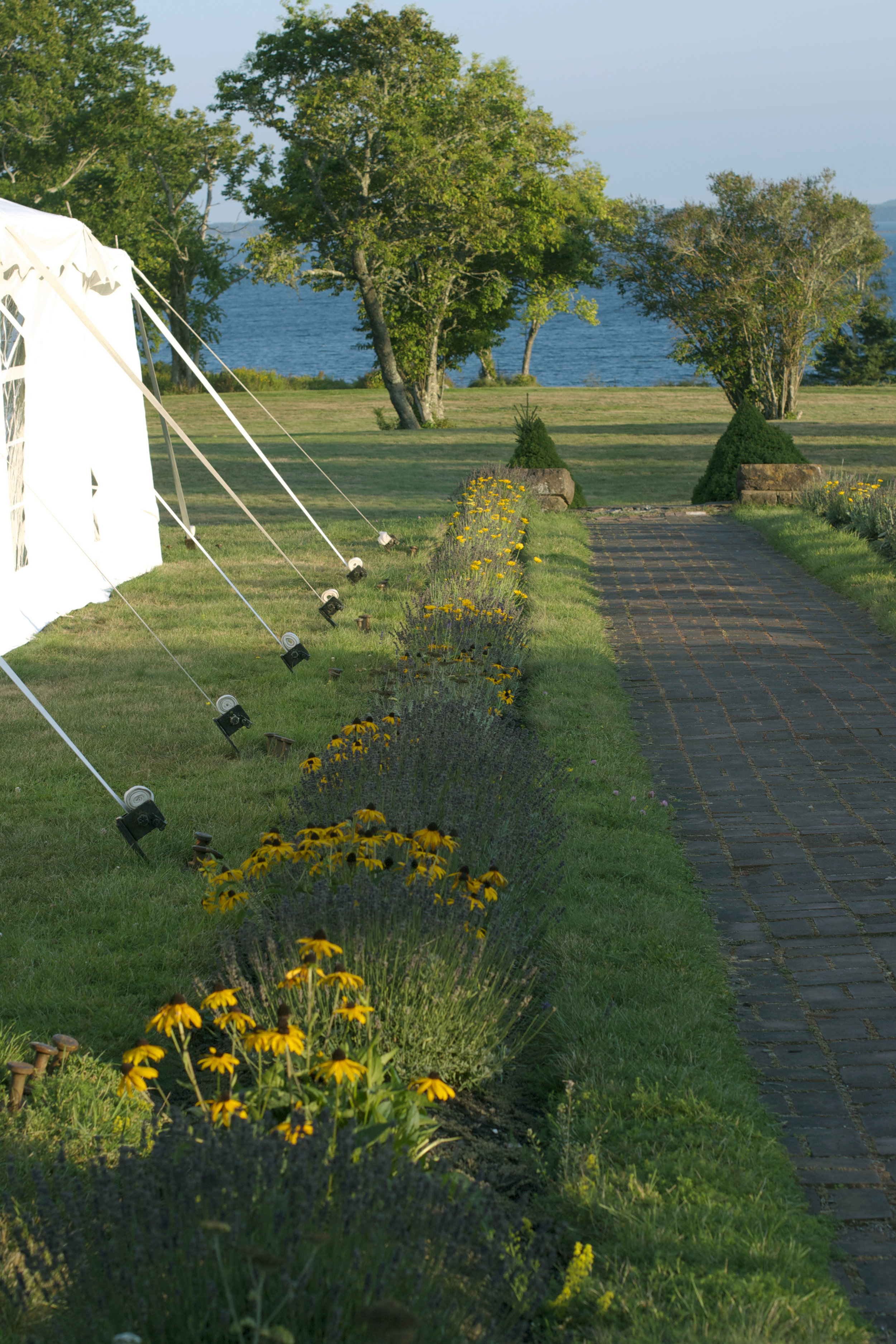 flower-path-walkway.jpg