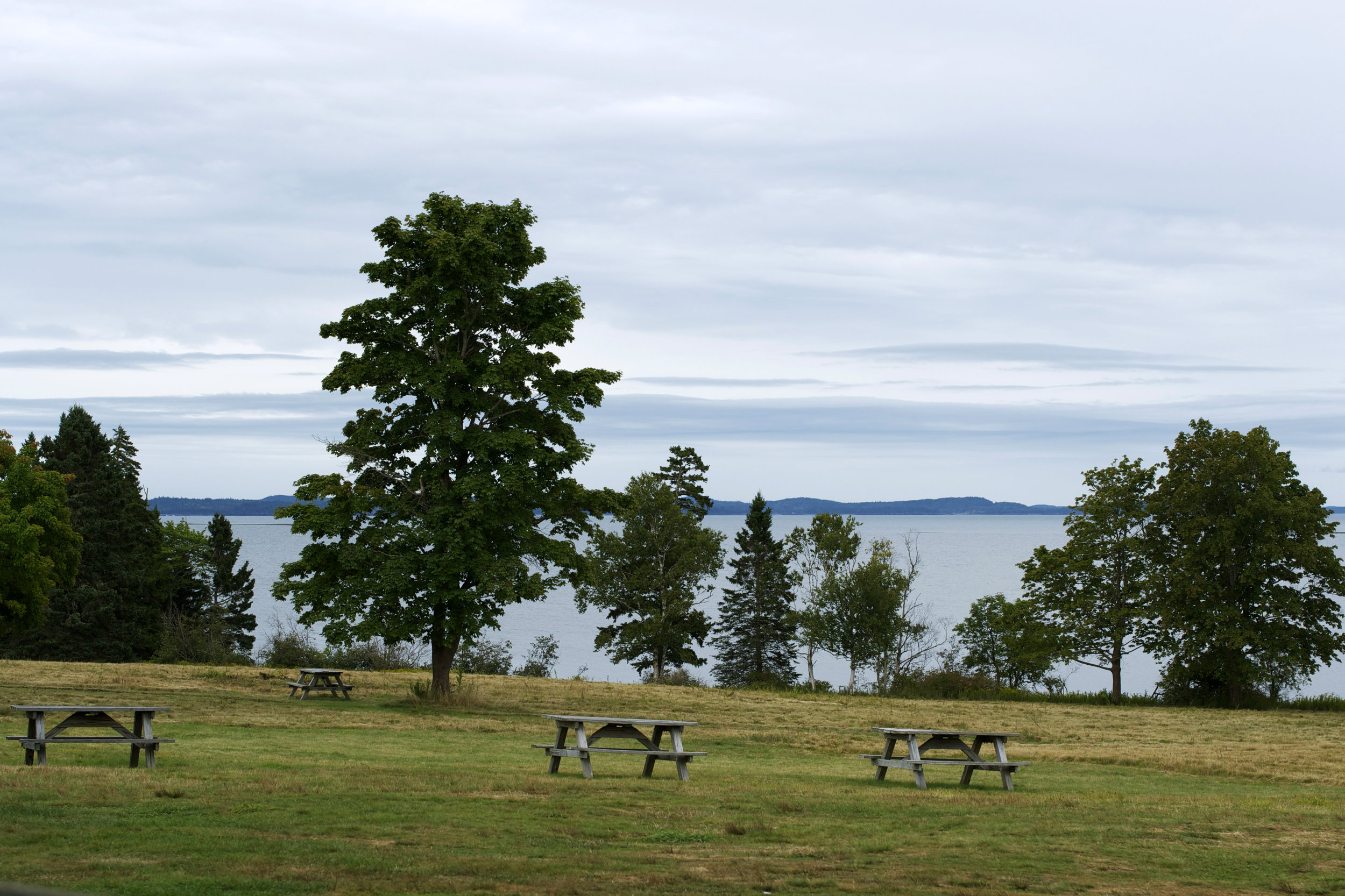 front-lawn-picnic-tables.jpg