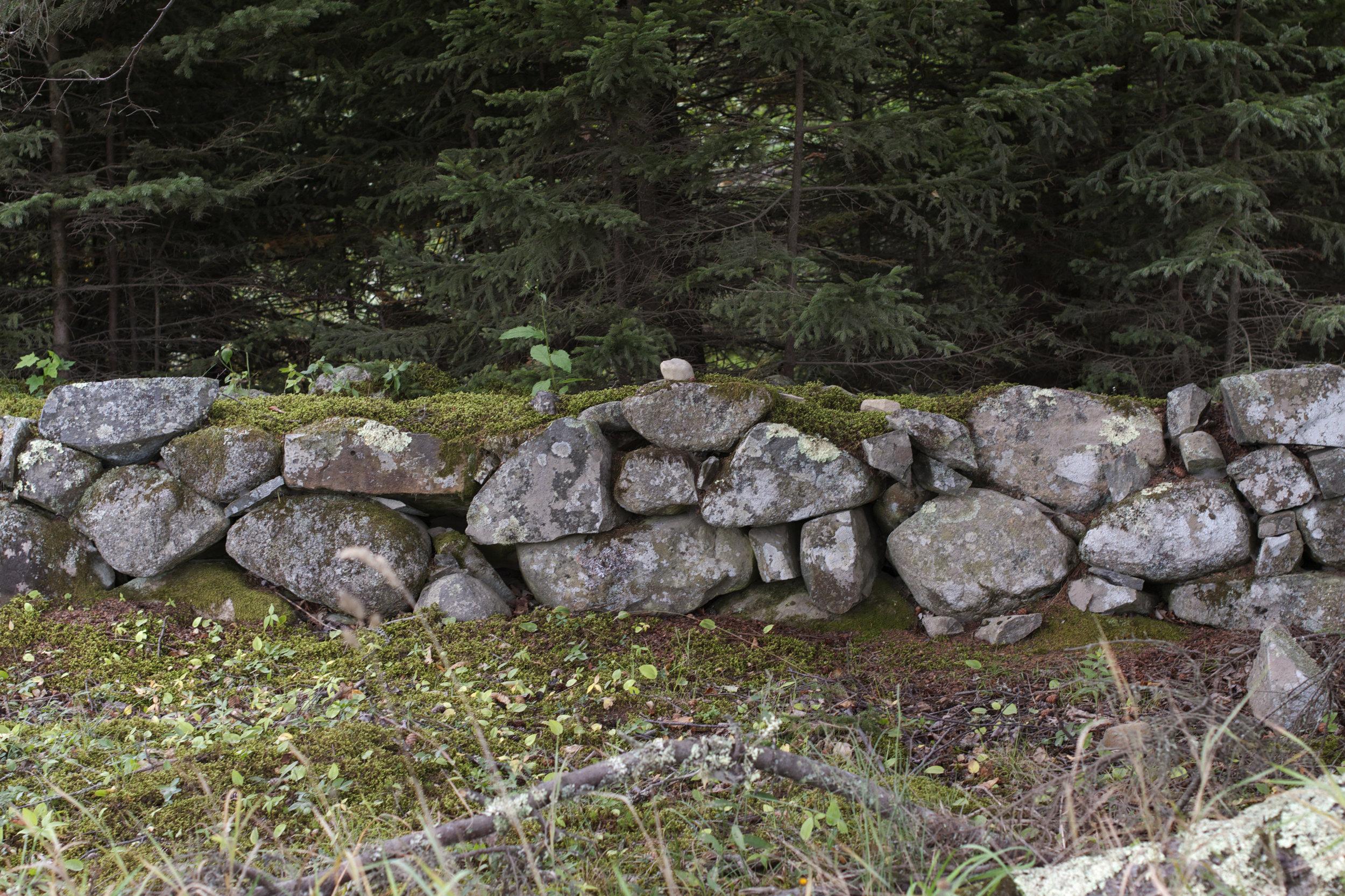 stone-wall-moss-covered.jpg