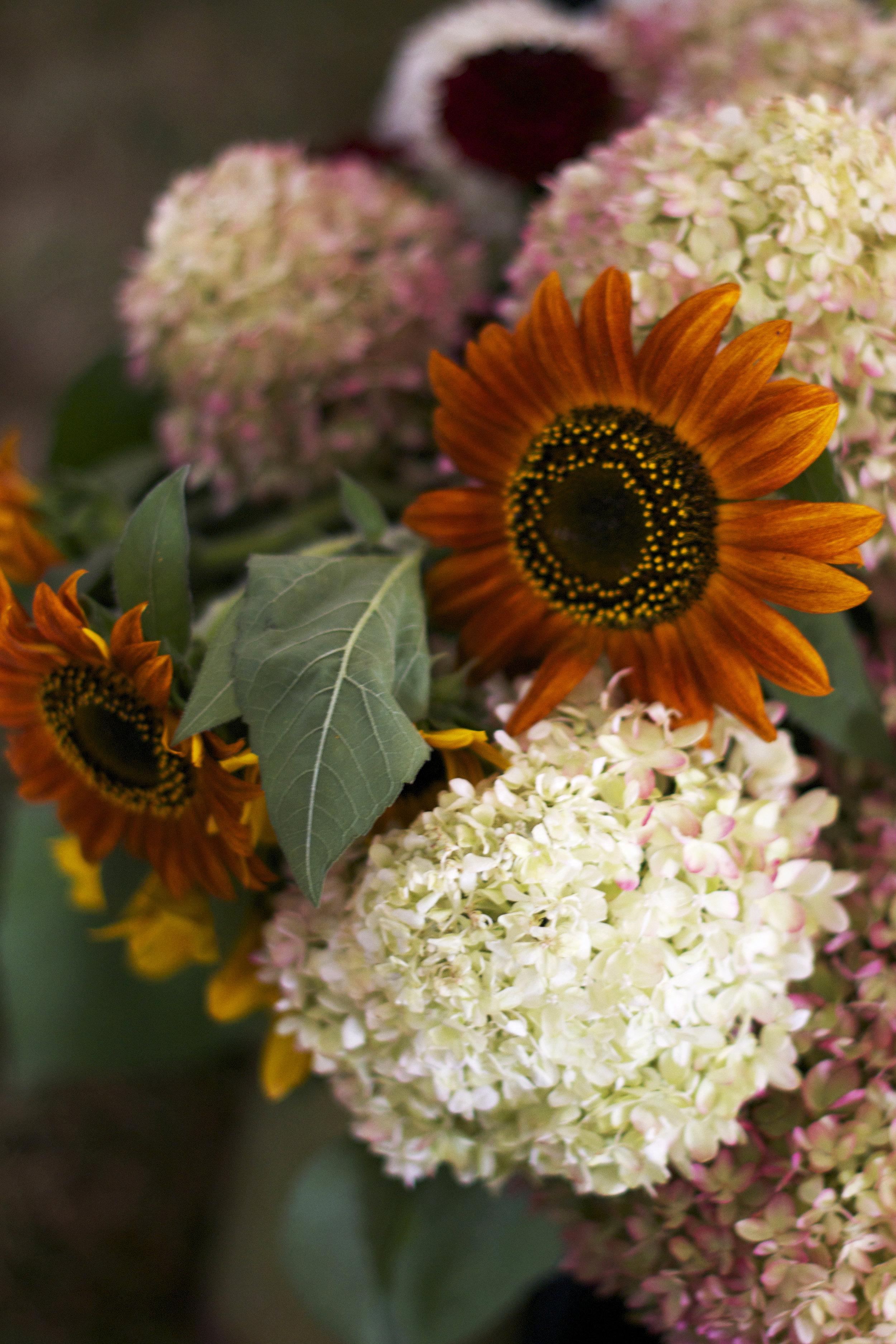 floral-autumn-bouquet.jpg