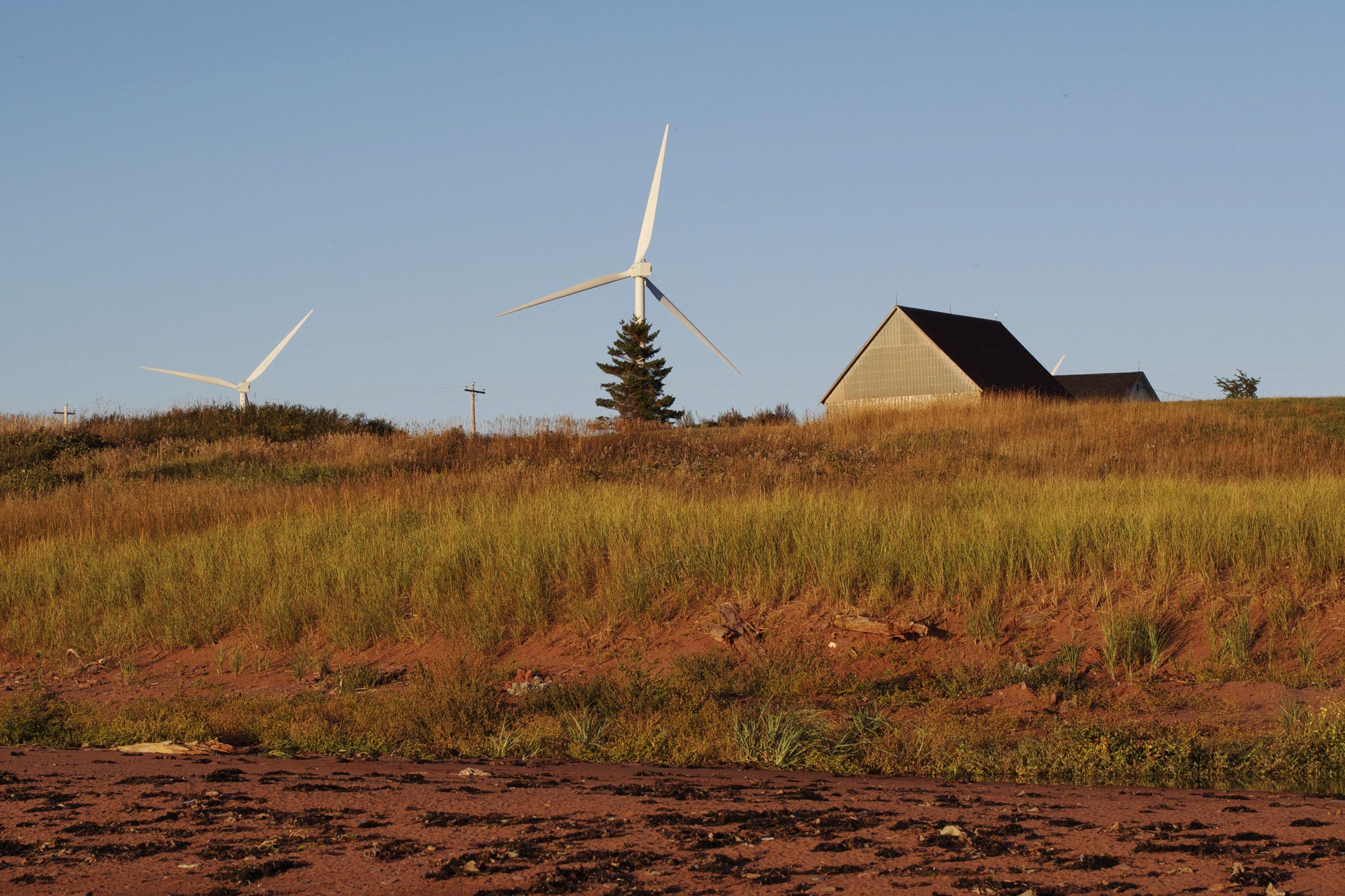 windmills-farm.jpg