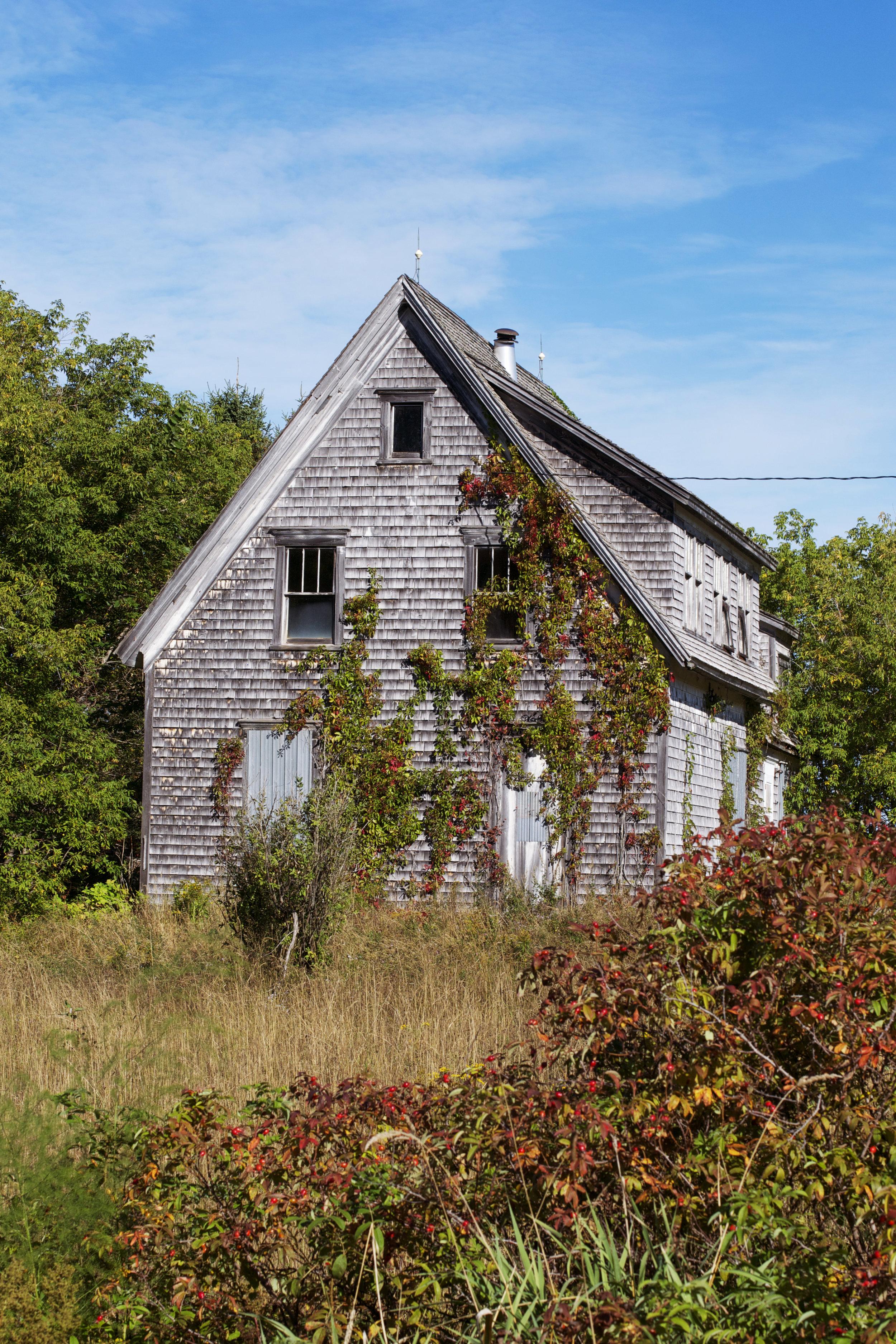 vine-covered-abandoned-house.jpg