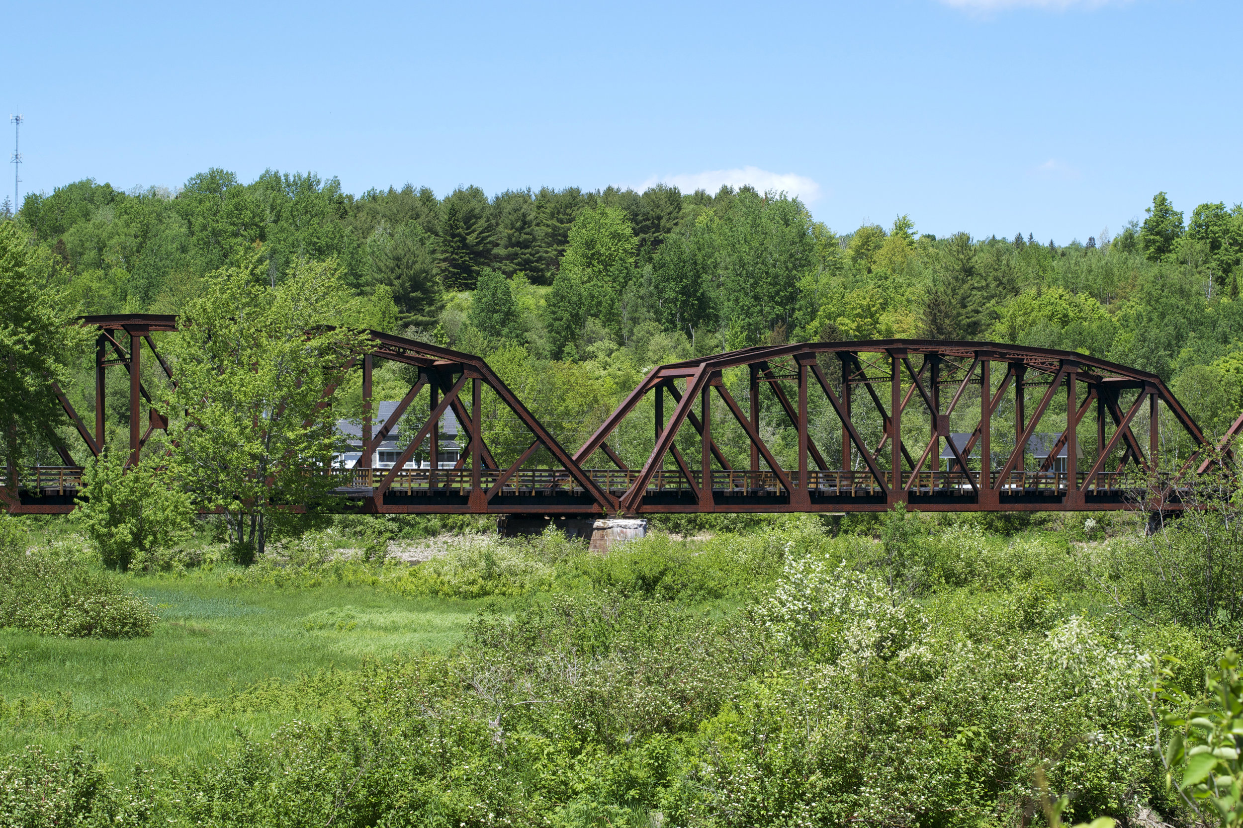 doaktown-train-bridge-in-bushes.jpg