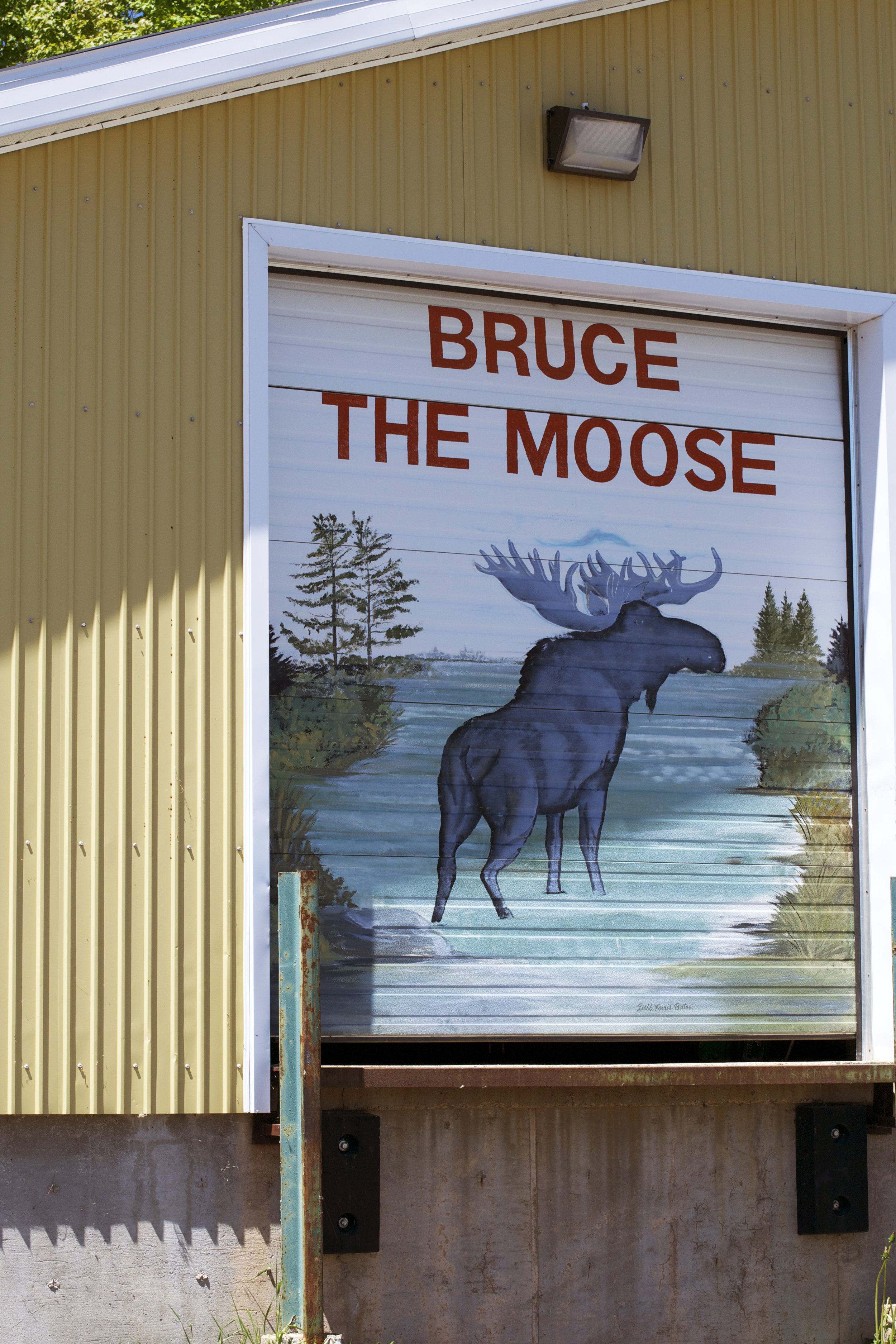 Bruce-the-Moose-painted-garage-door.jpg