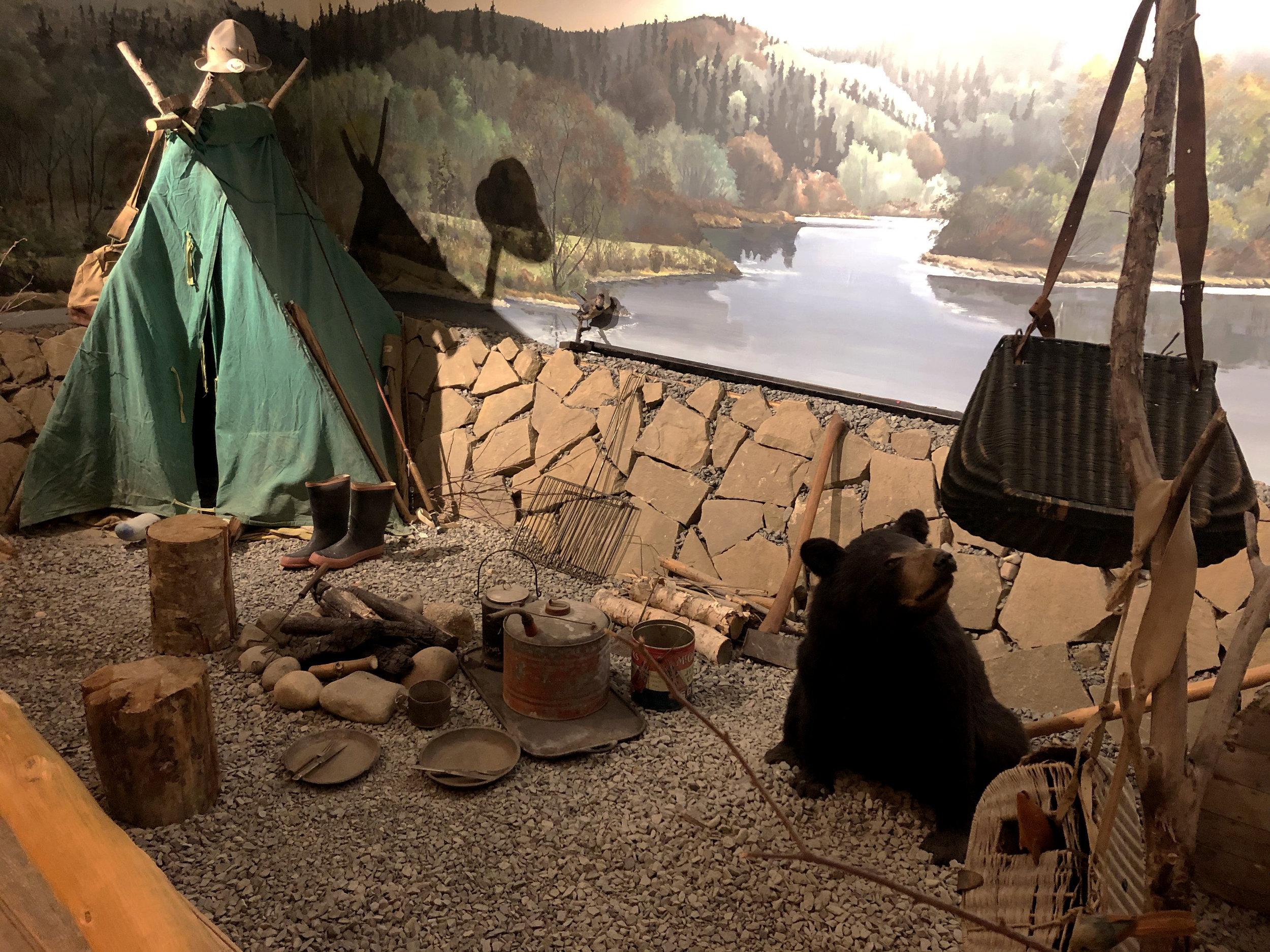 bear-tent-display.jpg