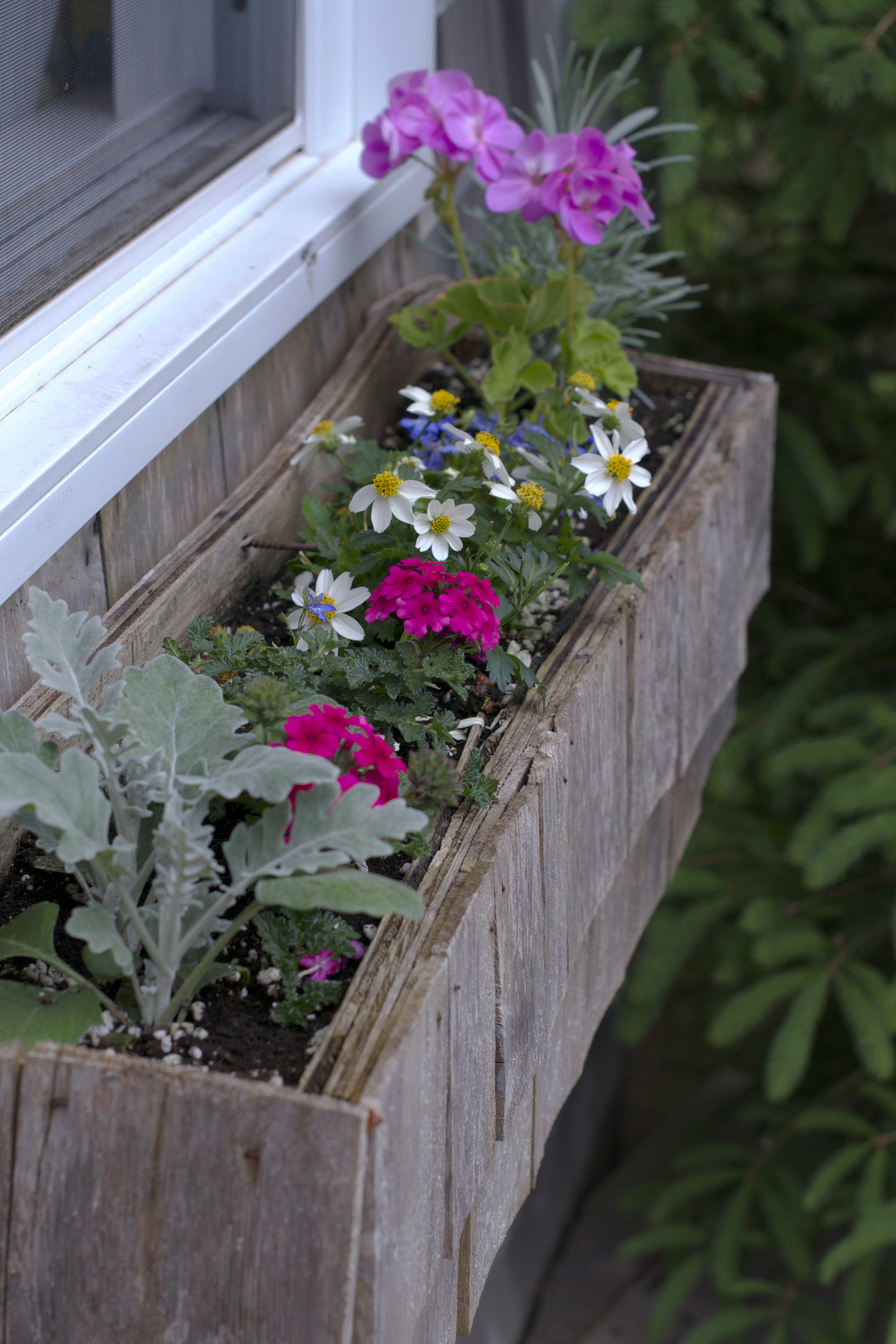 bunkhouse-planter.jpg