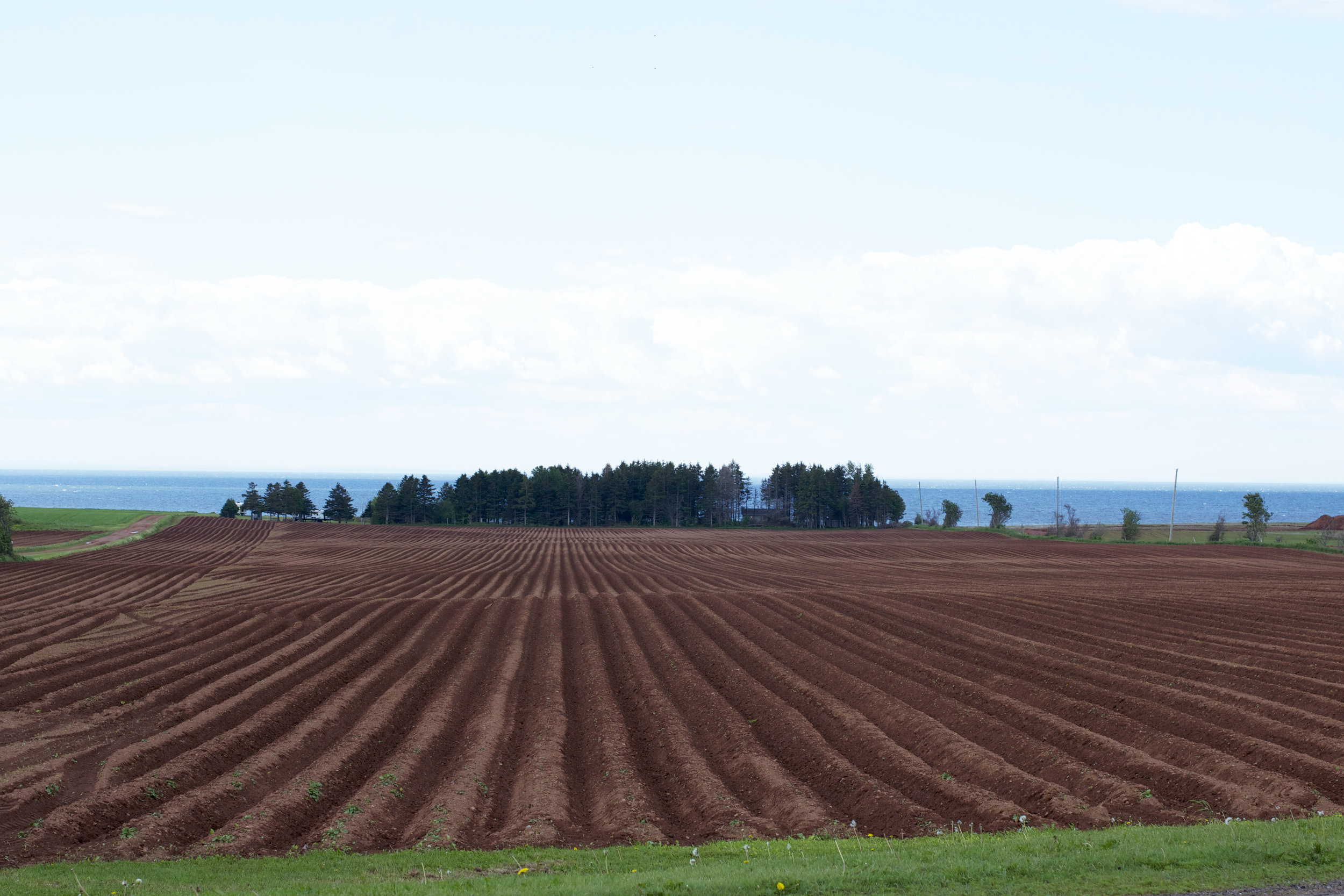freshly-tilled-farmland.jpg