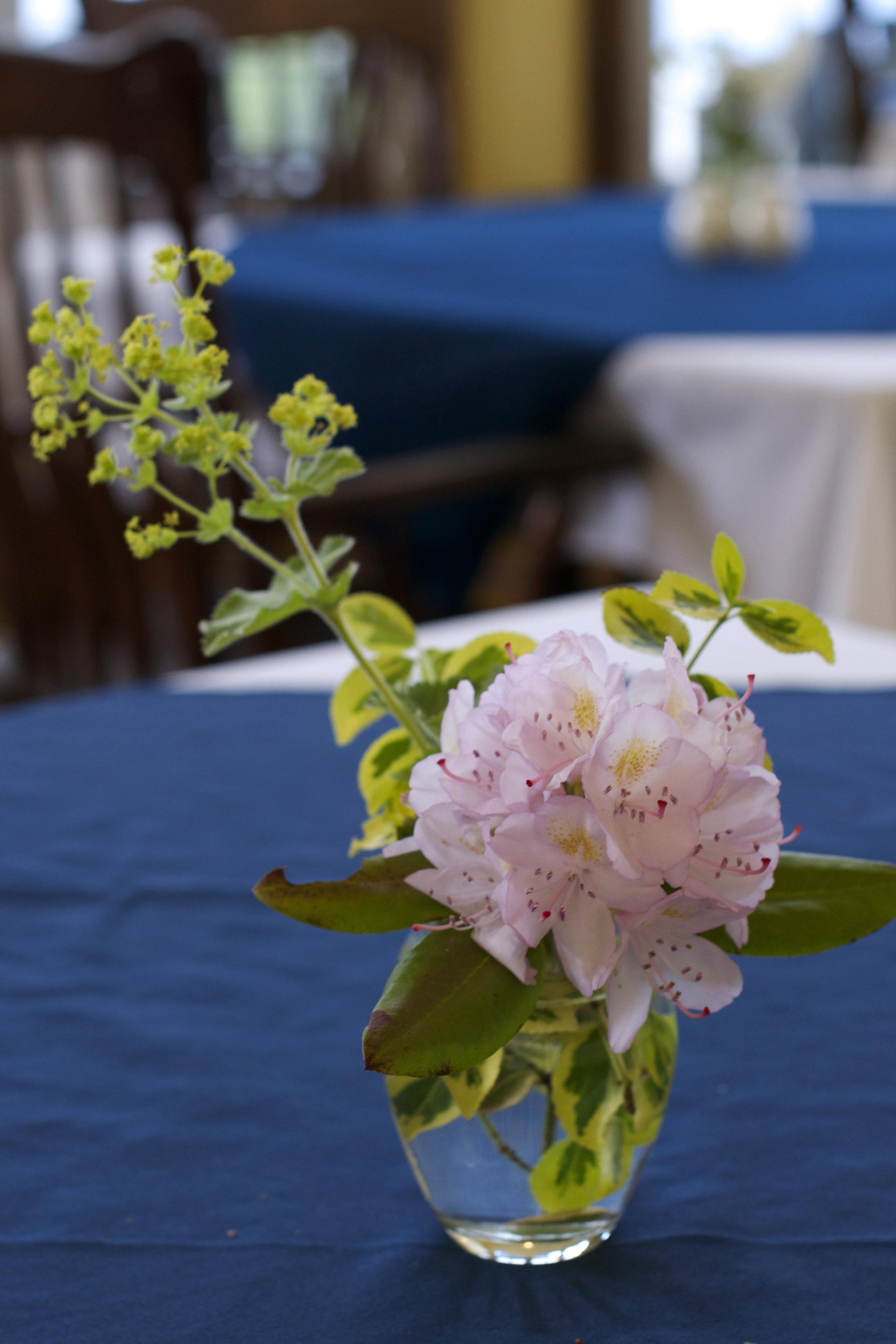 fresh-pink-flowers-on-table.jpg