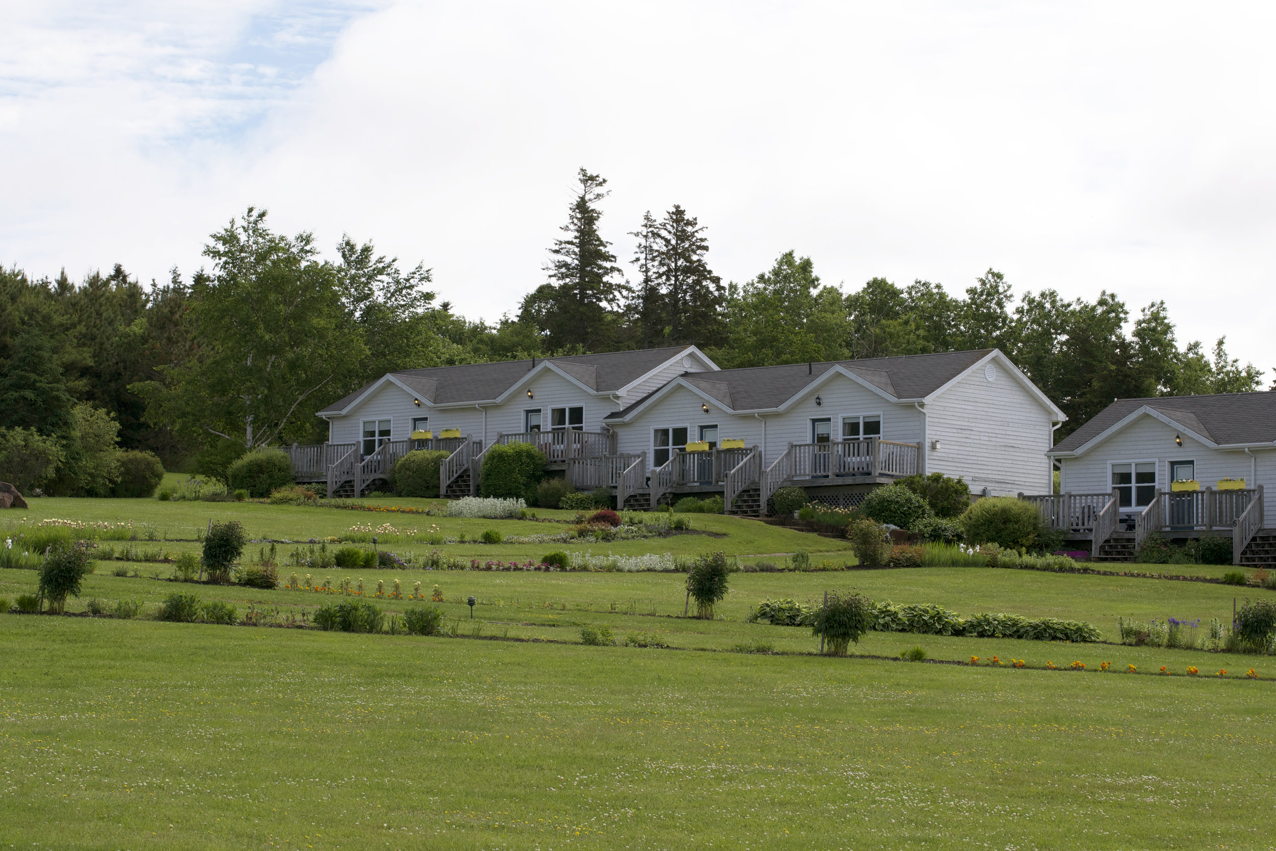 cottages-grouping-near-top-of property.jpg