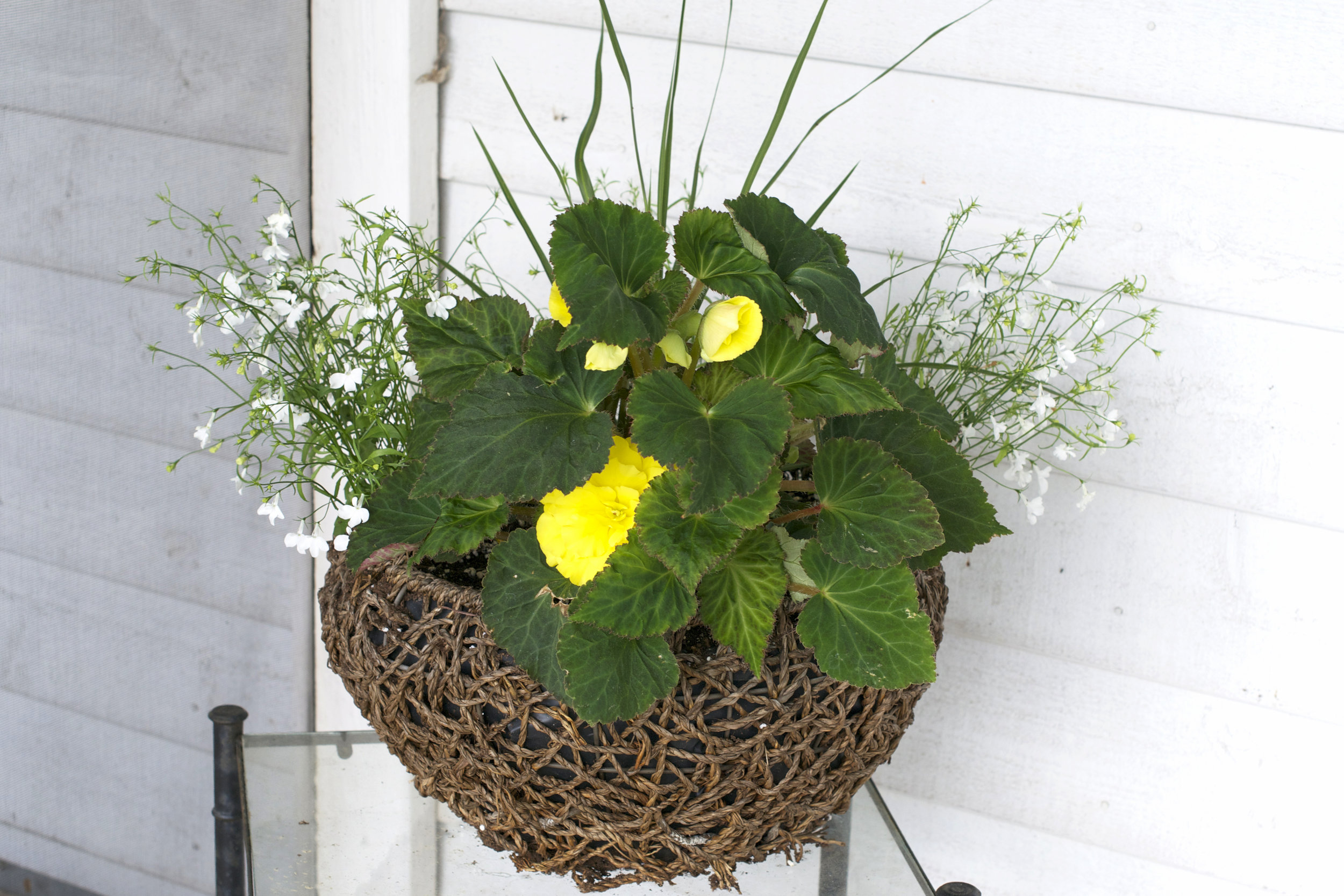 nest-flower-pot.jpg