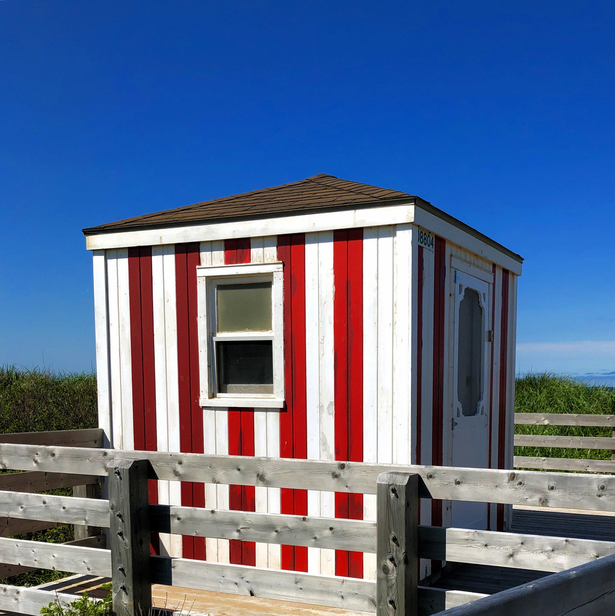 lifeguard-house-on-boardwalk-greenwich-park.jpg