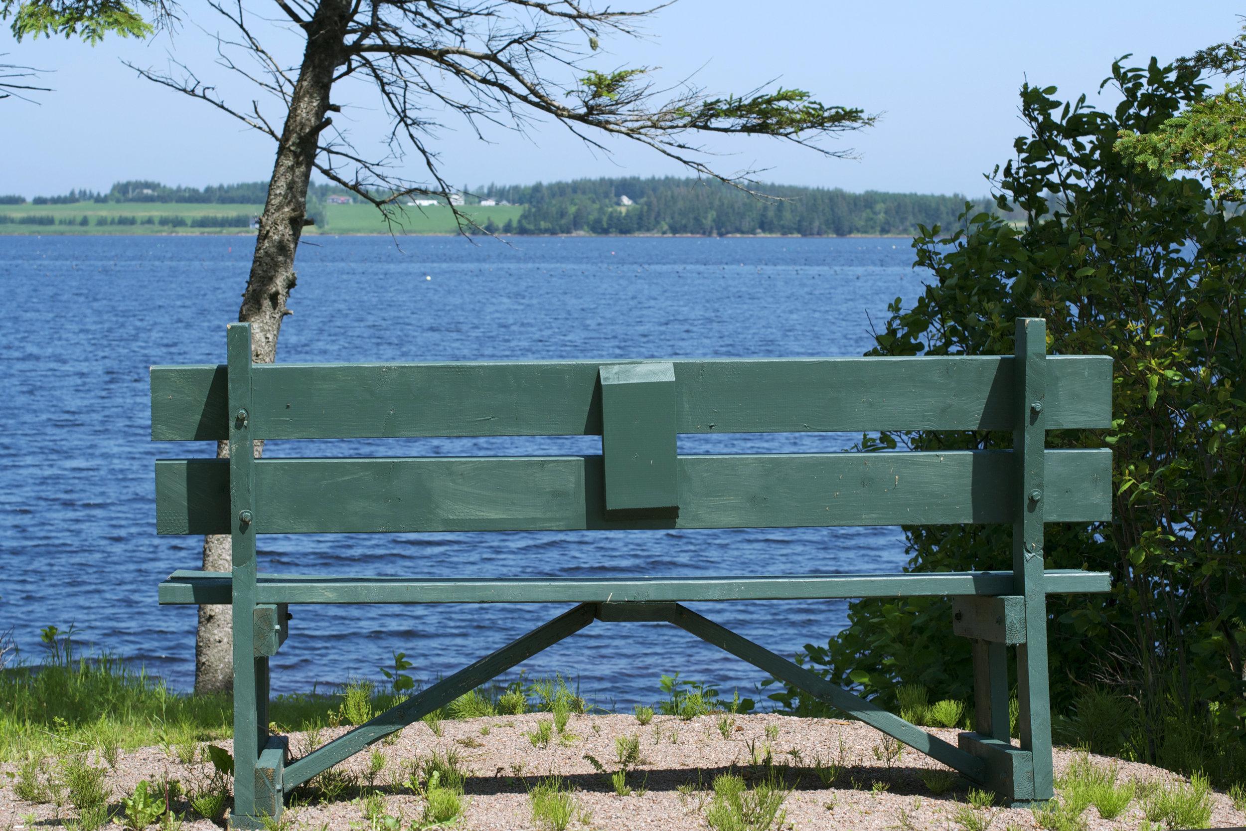 bench-view.jpg