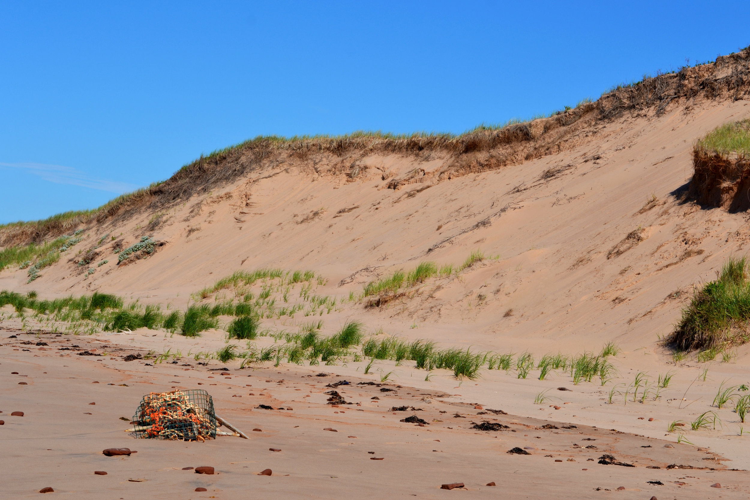 parabolic-dunes-and-fishing-rope-pile.jpg
