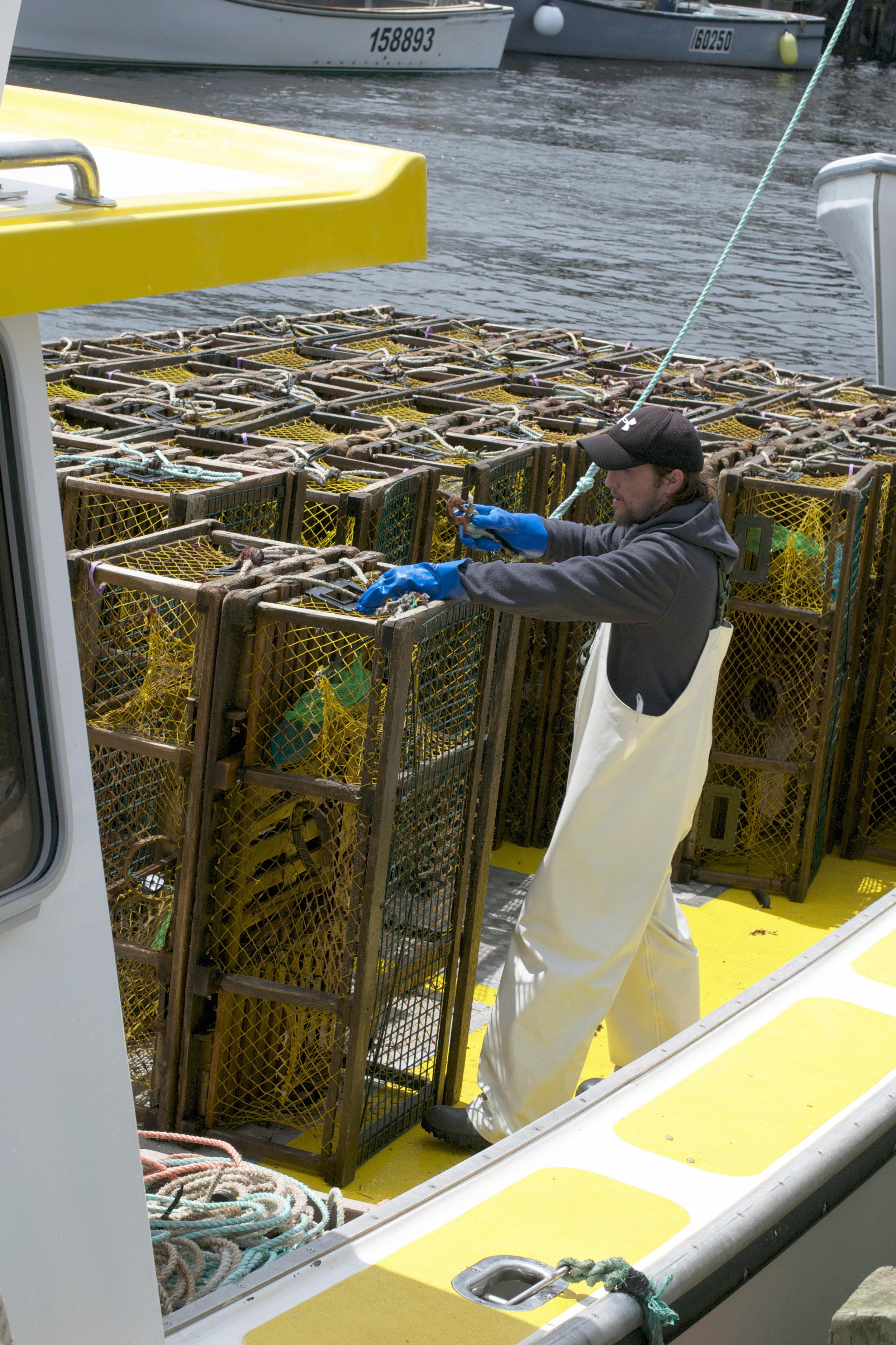fisherman-hooking-traps.jpg