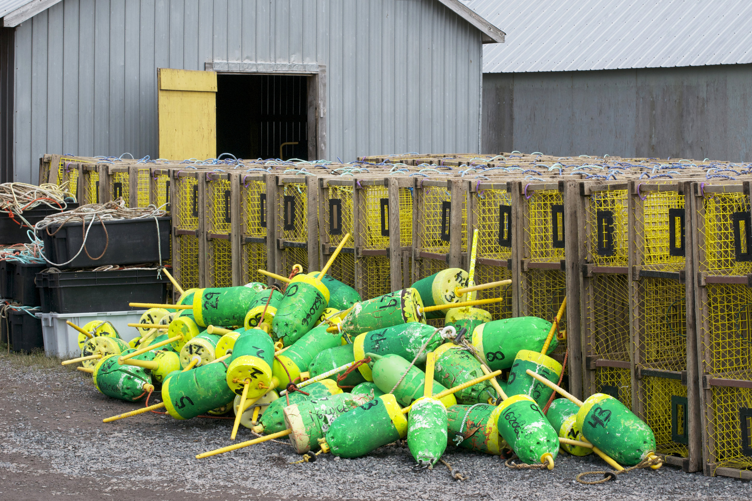 green-and-yellow-buoys.jpg