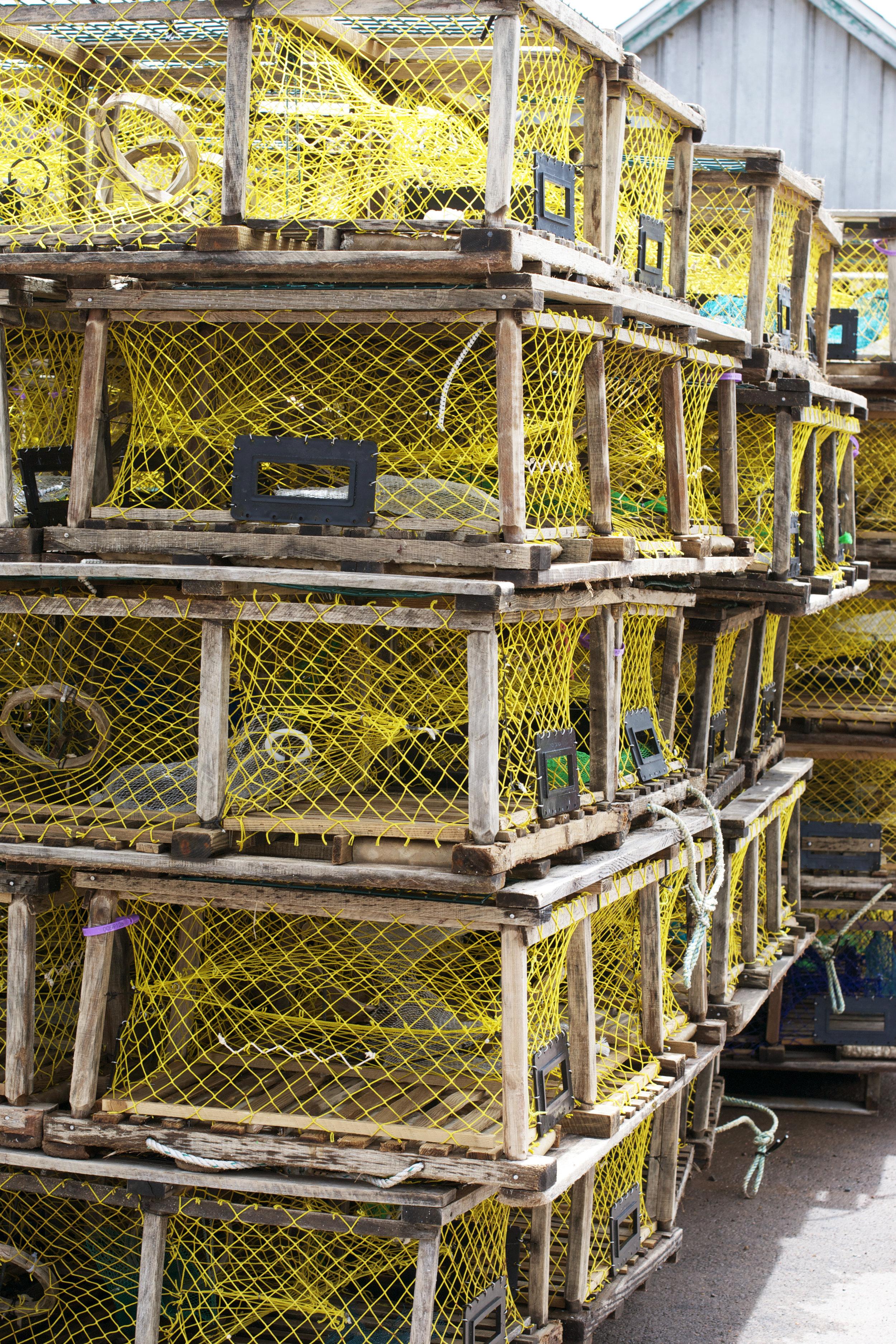 stacks-of-traps.jpg