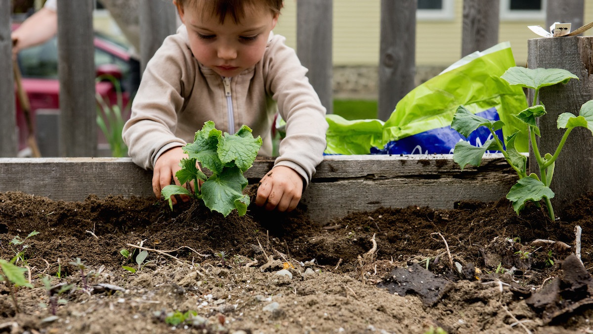 toddler-montessori-garden.jpg