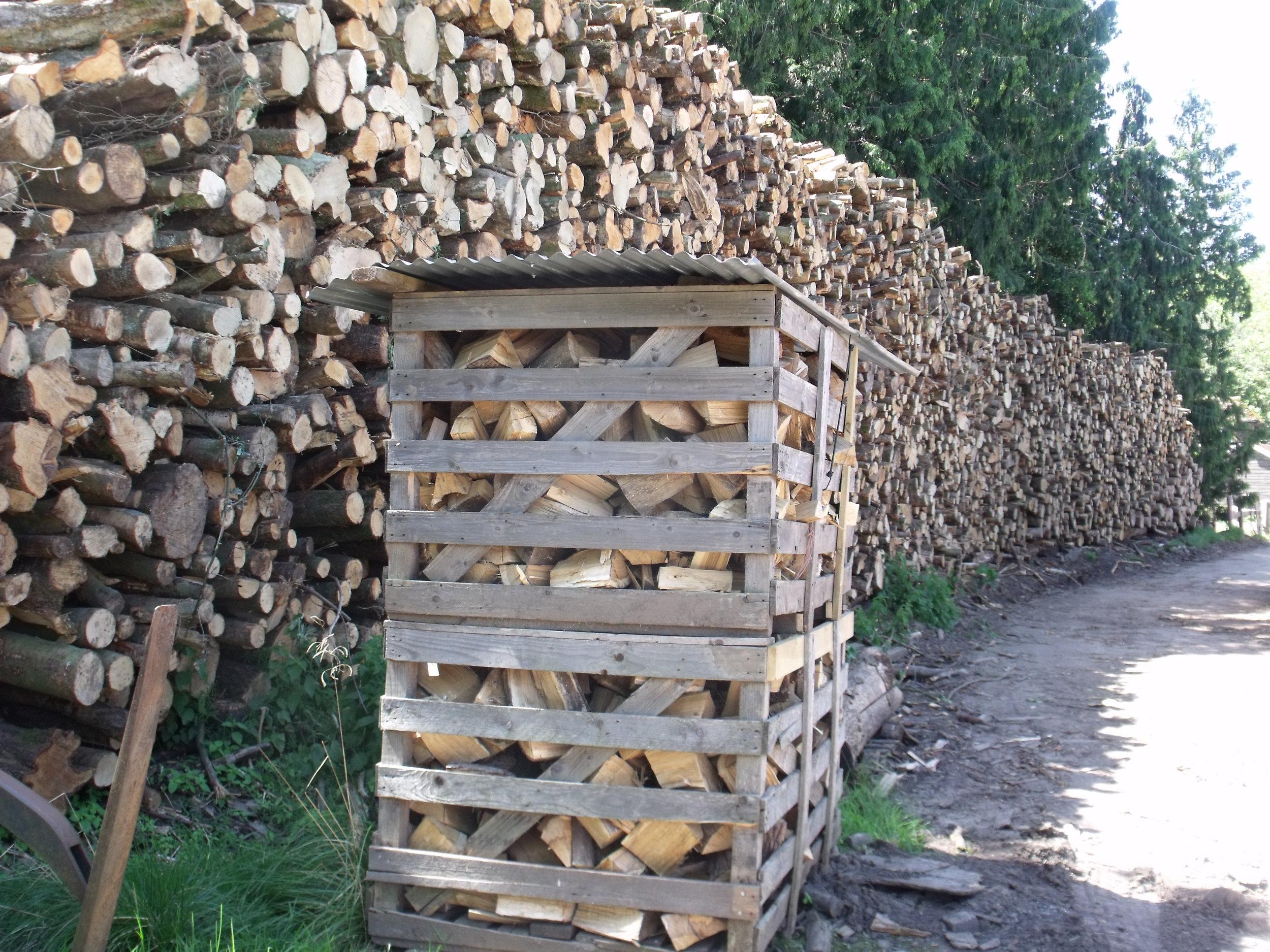 Logs with box.JPG