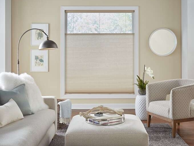 Economy Light Filtering Cellular Shades  by  Blinds.com